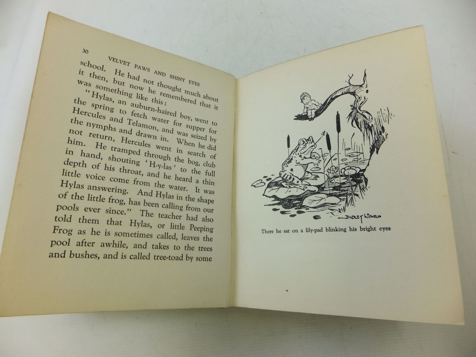 Photo of VELVET PAWS AND SHINY EYES written by Cole, Carol Cassidy illustrated by Ward, Dudley Stead, Leo. L. published by Hodder & Stoughton (STOCK CODE: 2114353)  for sale by Stella & Rose's Books