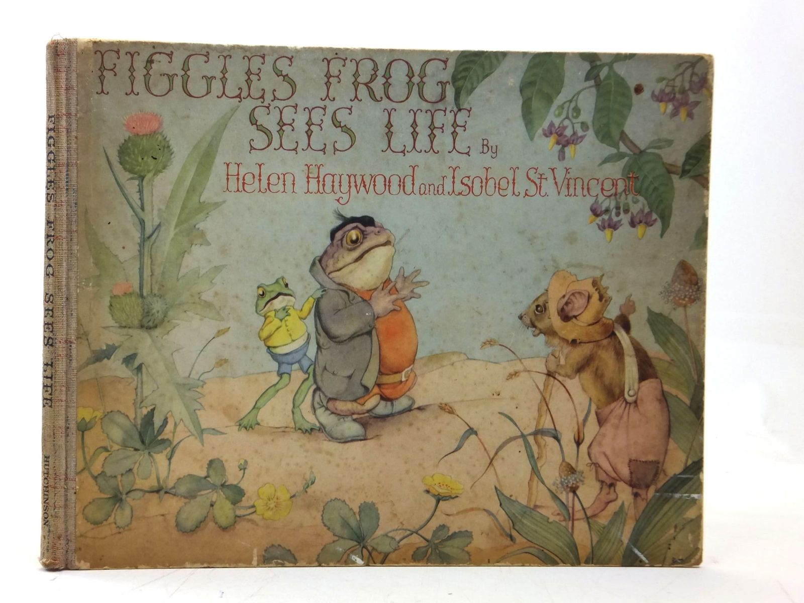 Photo of FIGGLES FROG SEES LIFE written by St. Vincent, Isobel illustrated by Haywood, Helen published by Hutchinson (STOCK CODE: 2115443)  for sale by Stella & Rose's Books