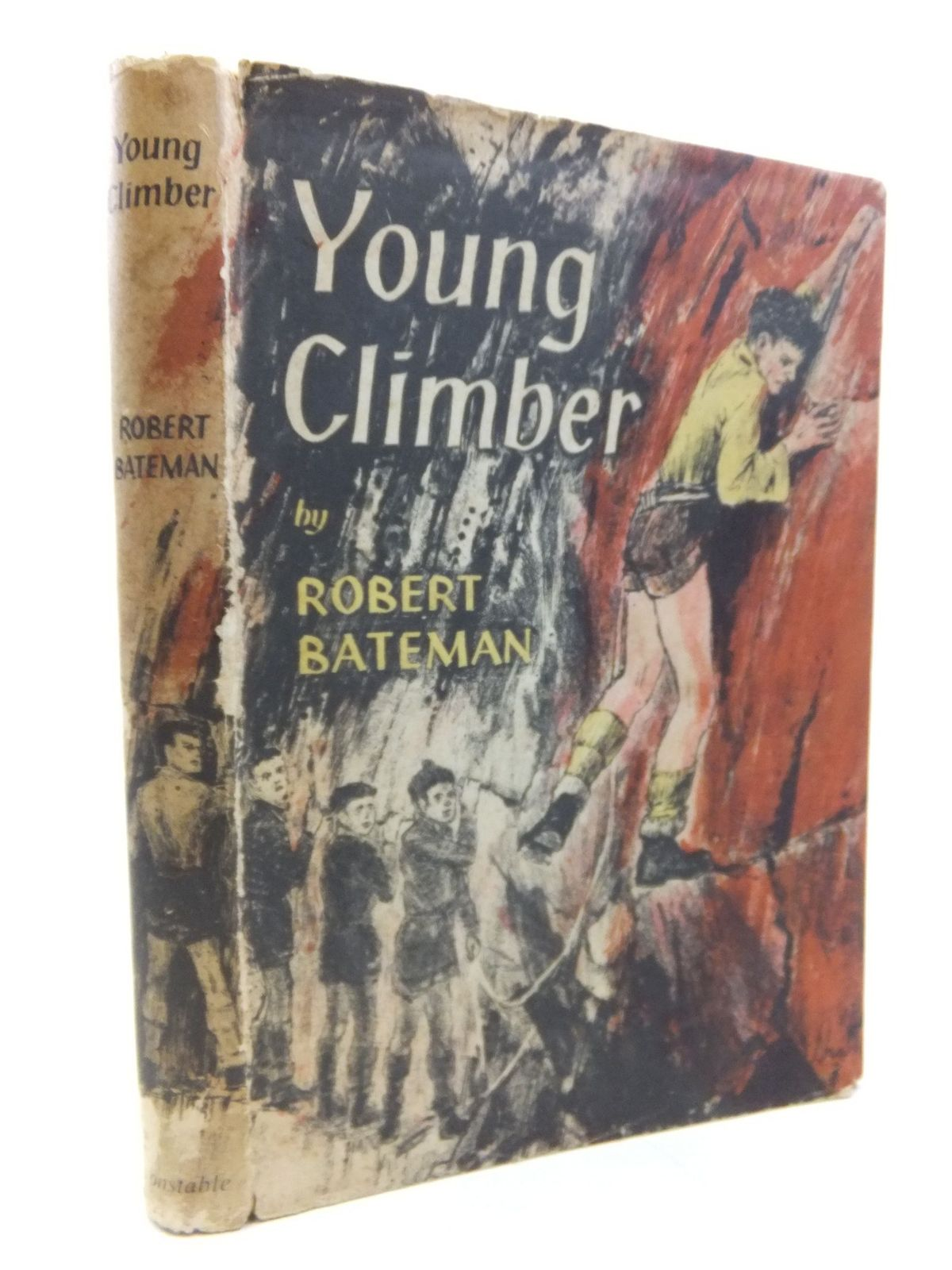 Photo of YOUNG CLIMBER- Stock Number: 2116394