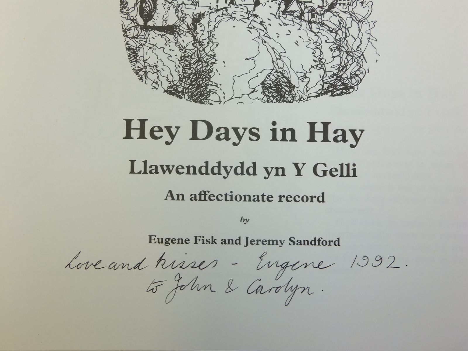 Photo of HEY DAYS IN HAY LLAWENDDYDD YN Y GELLI written by Fisk, Eugene Sandford, Jeremy illustrated by Fisk, Eugene published by The Fitzponce Press (STOCK CODE: 2116546)  for sale by Stella & Rose's Books