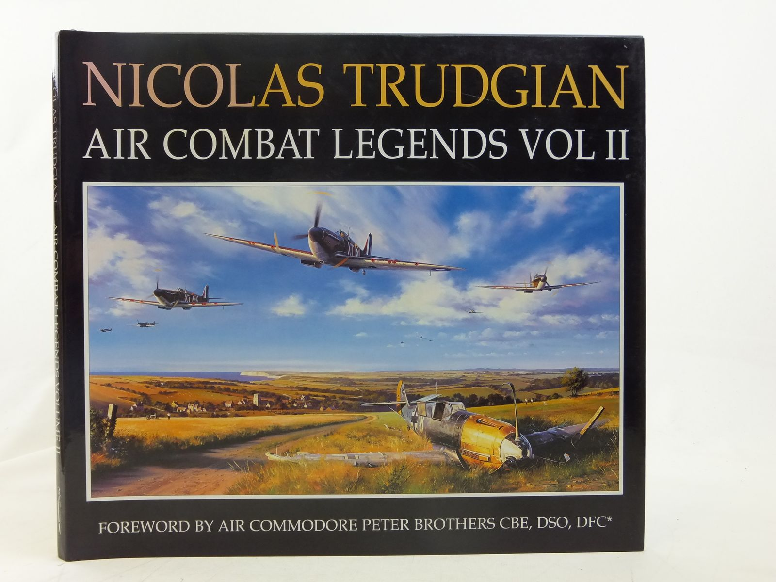 Photo of NICOLAS TRUDGIAN AIR COMBAT LEGENDS VOLUME II written by Trudgian, Nicolas illustrated by Trudgian, Nicolas published by Spellmount Ltd. (STOCK CODE: 2116548)  for sale by Stella & Rose's Books