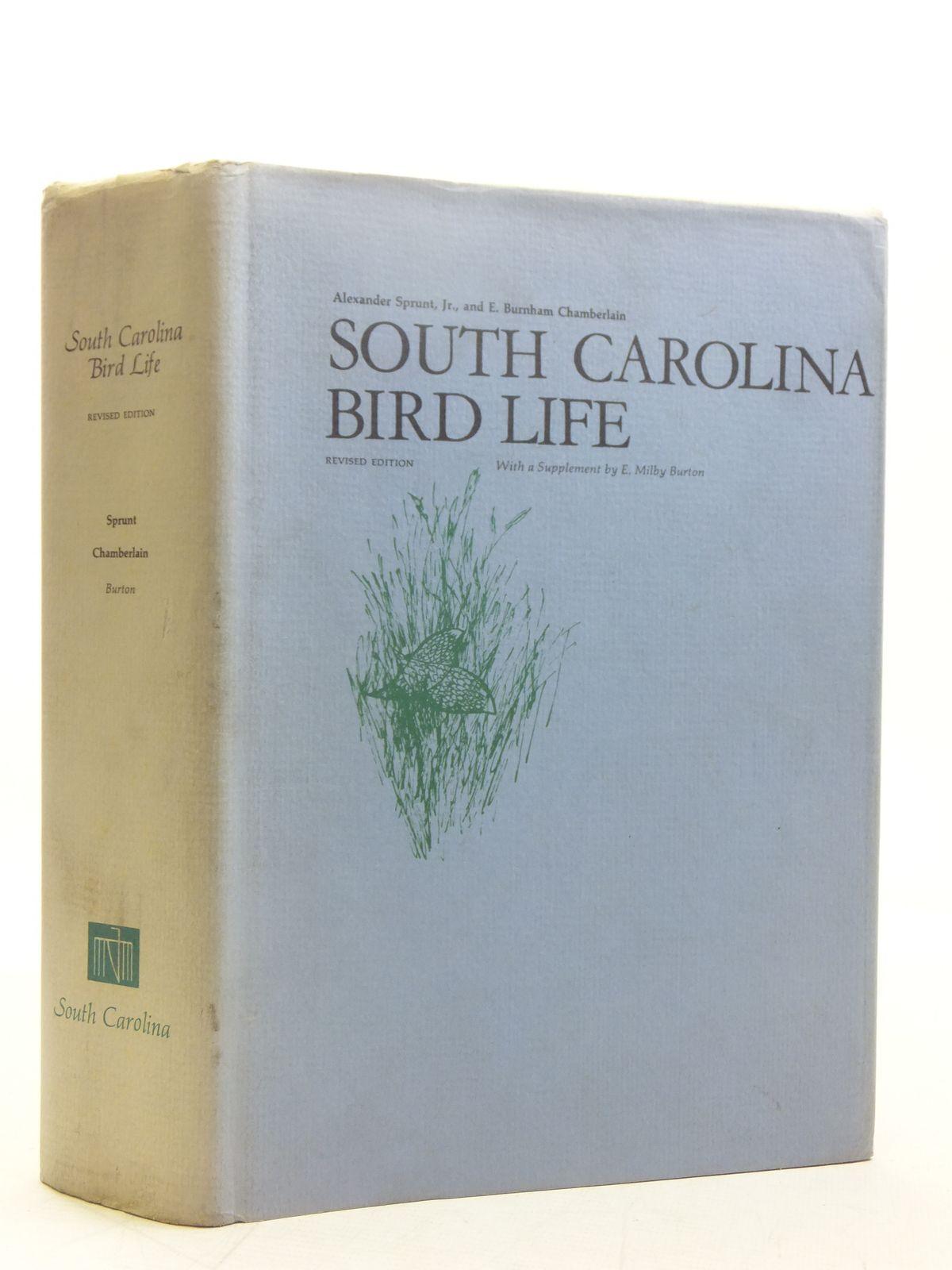 Photo of SOUTH CAROLINA BIRD LIFE- Stock Number: 2118321