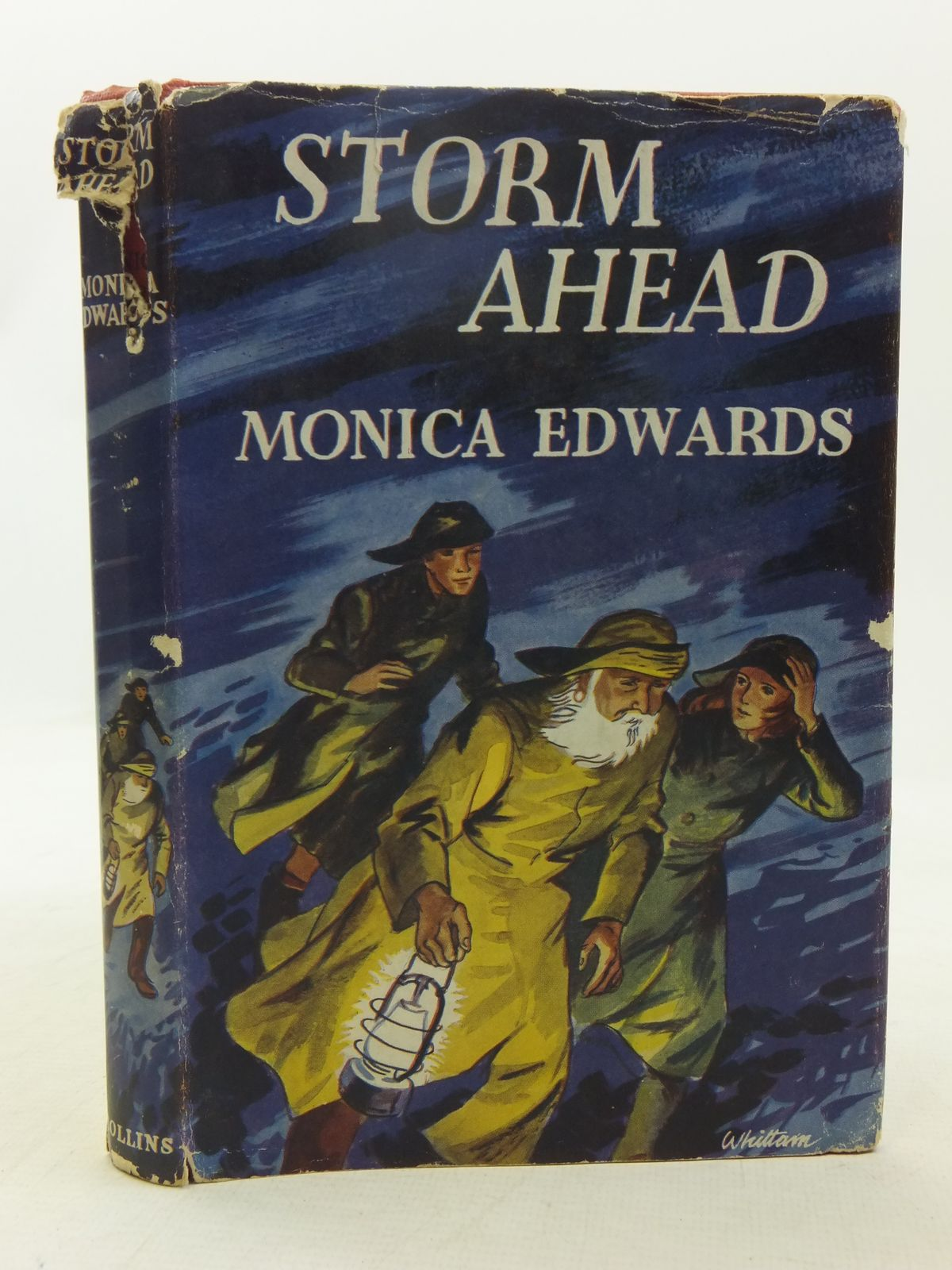 Photo of STORM AHEAD written by Edwards, Monica illustrated by Whittam, Geoffrey published by Collins (STOCK CODE: 2118382)  for sale by Stella & Rose's Books