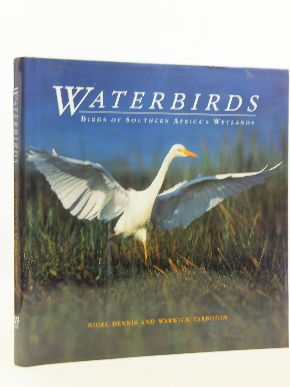 Photo of WATERBIRDS BIRDS OF SOUTHERN AFRICA'S WETLANDS written by Tarboton, Warwick<br />Dennis, Nigel published by New Holland (STOCK CODE: 2119861)  for sale by Stella & Rose's Books