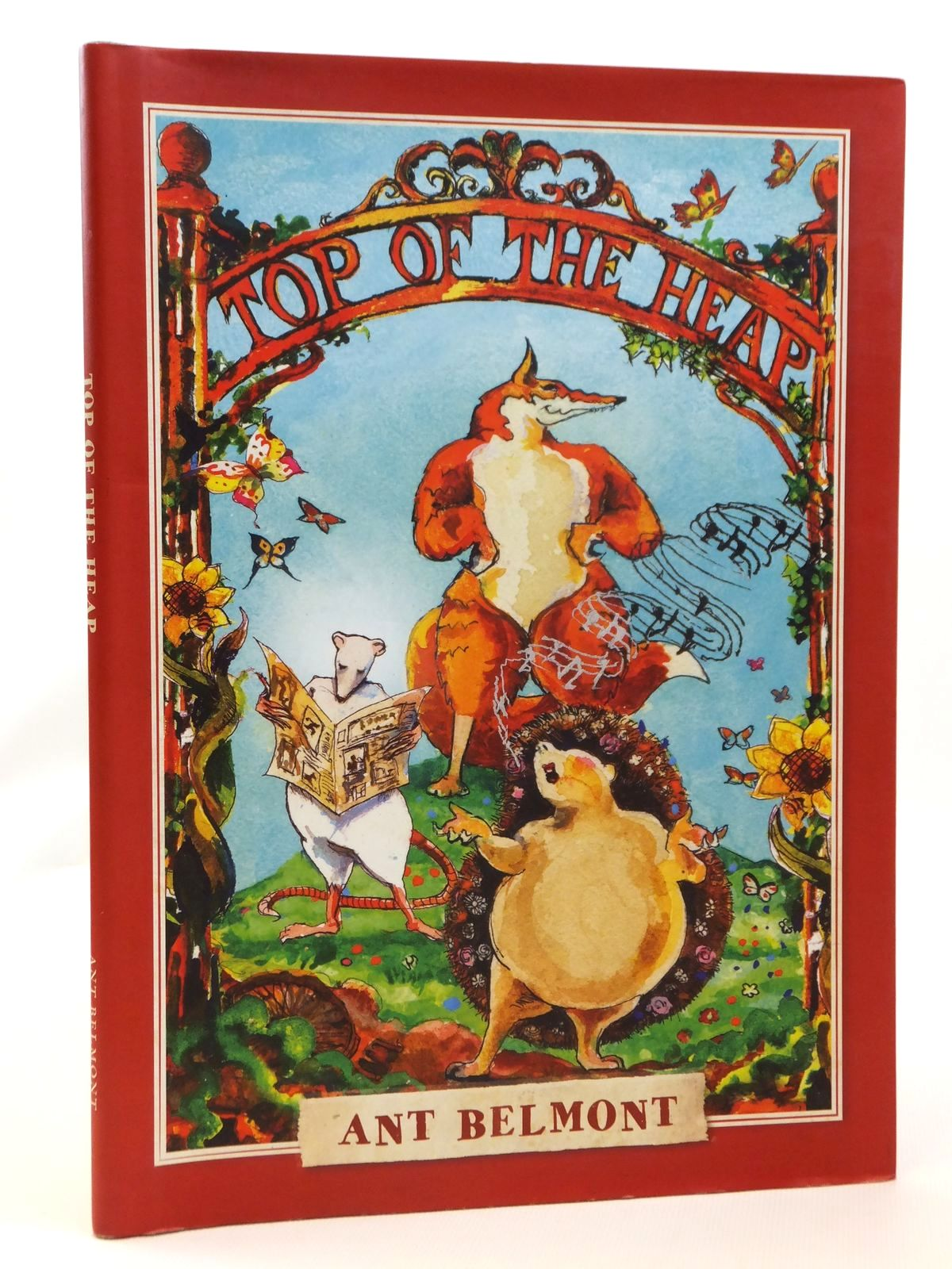 Photo of TOP OF THE HEAP written by Belmont, Ant illustrated by Belmont, Ant published by Ant Belmont (STOCK CODE: 2121934)  for sale by Stella & Rose's Books