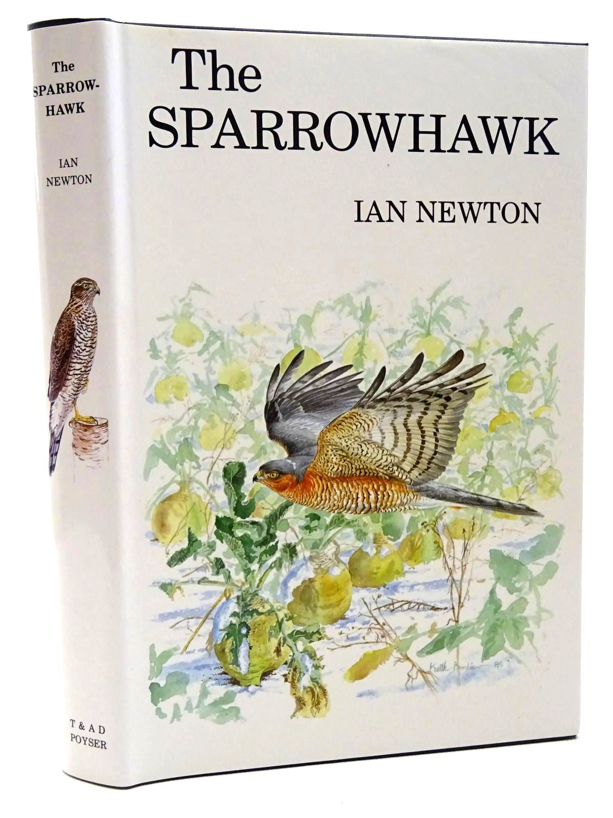 Photo of THE SPARROWHAWK written by Newton, Ian illustrated by Brockie, Keith published by T. & A.D. Poyser (STOCK CODE: 2124700)  for sale by Stella & Rose's Books
