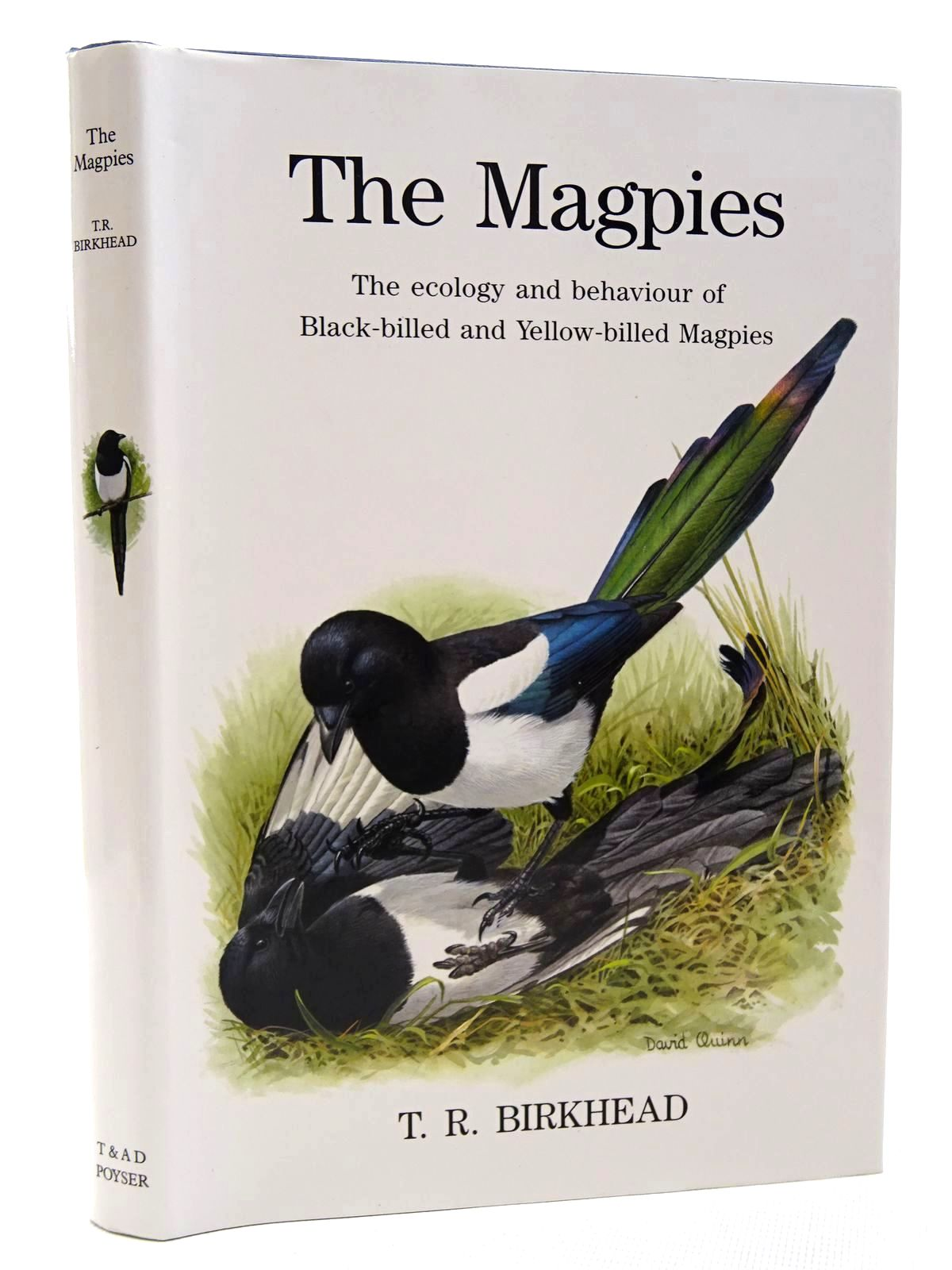 Photo of THE MAGPIES written by Birkhead, Tim illustrated by Quinn, David published by T. & A.D. Poyser (STOCK CODE: 2124701)  for sale by Stella & Rose's Books