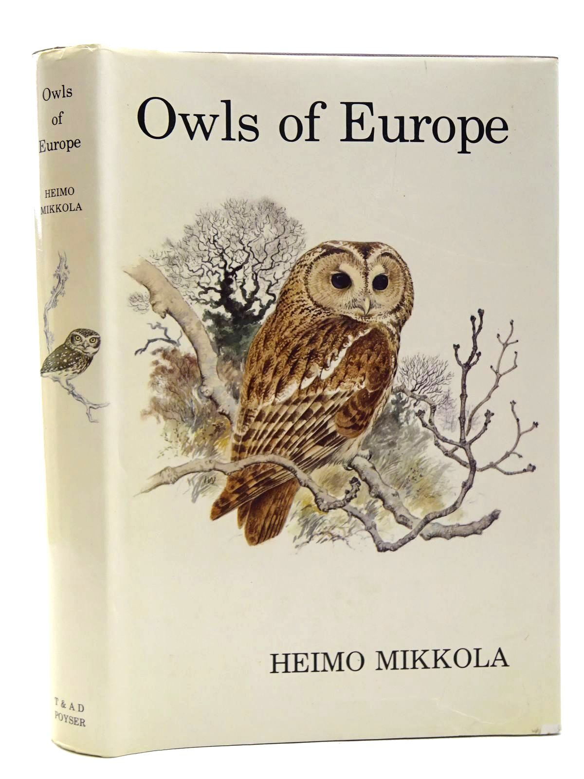 Photo of OWLS OF EUROPE- Stock Number: 2124702