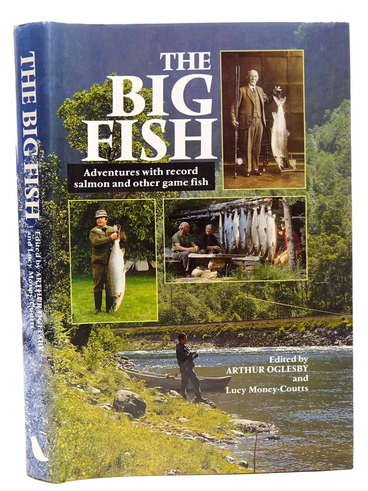 Photo of THE BIG FISH written by Oglesby, Arthur Money-Coutts, Lucy published by Robinson Publishing (STOCK CODE: 2126569)  for sale by Stella & Rose's Books