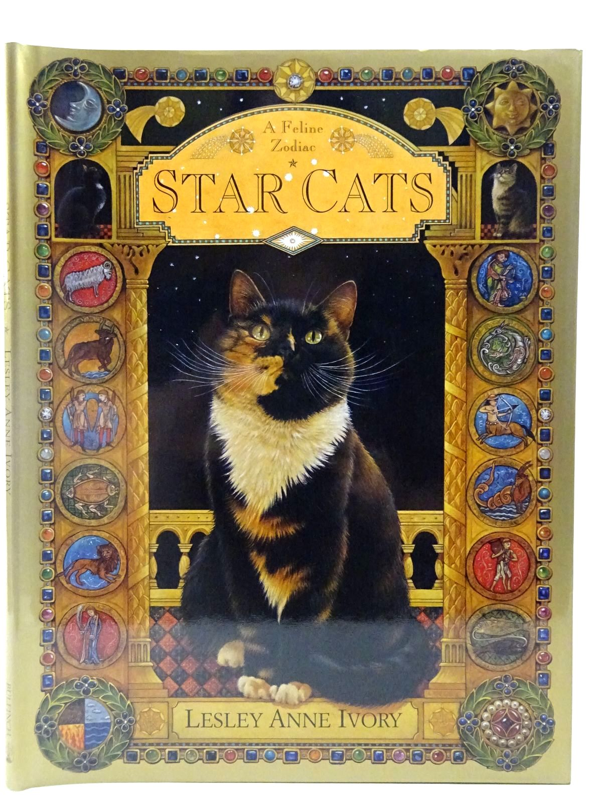 Photo of STAR CATS- Stock Number: 2127449