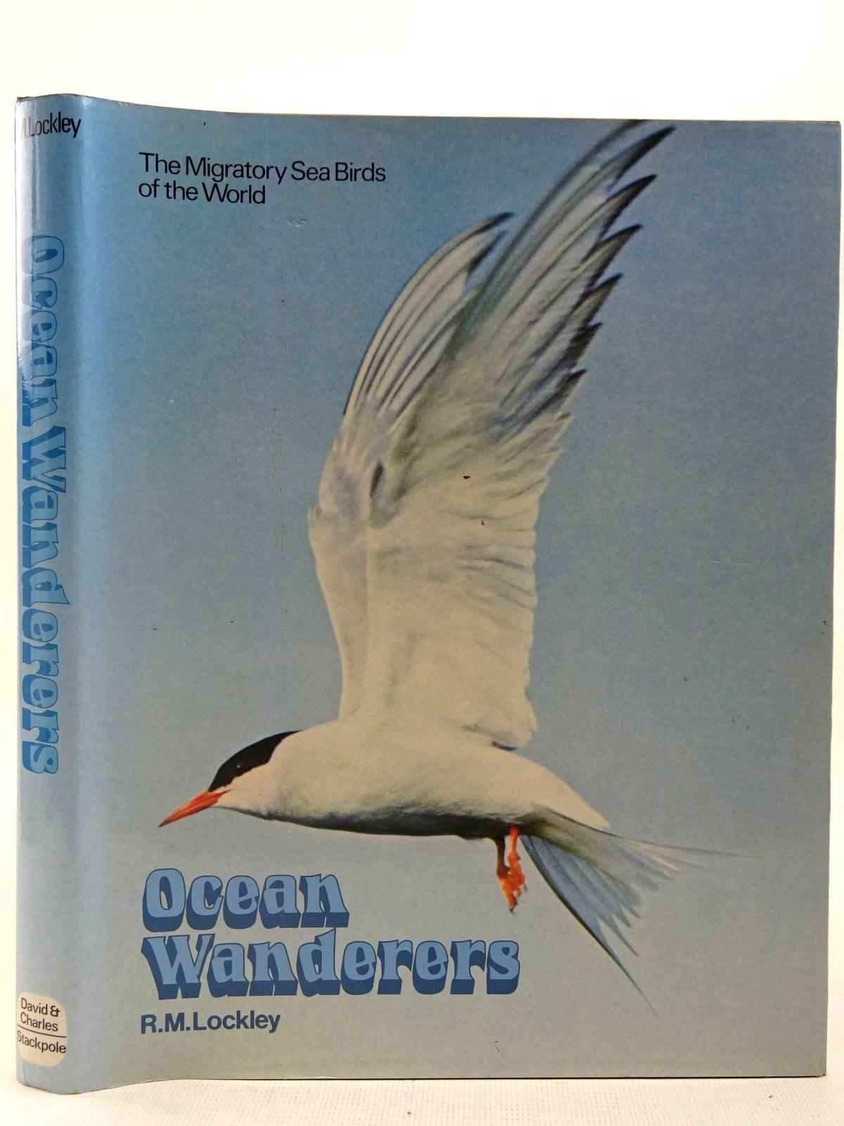 Photo of OCEAN WANDERERS- Stock Number: 2127537