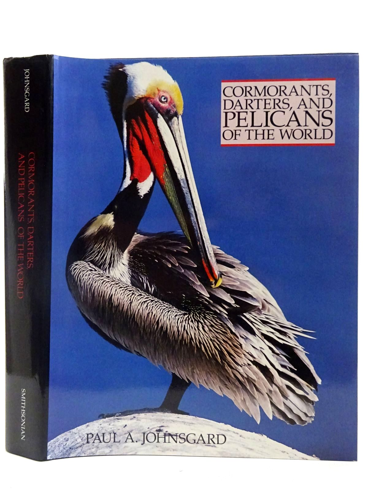Photo of CORMORANTS, DARTERS, AND PELICANS OF THE WORLD- Stock Number: 2127657