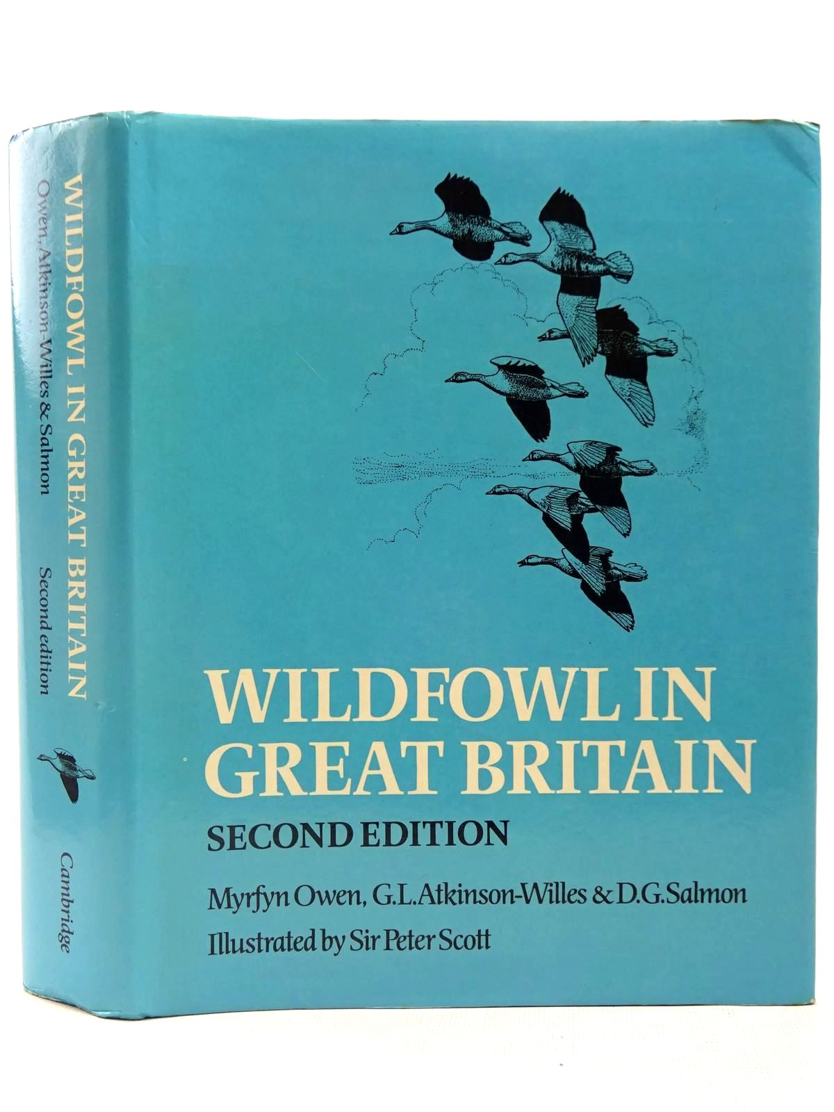 Photo of WILDFOWL IN GREAT BRITAIN- Stock Number: 2127760