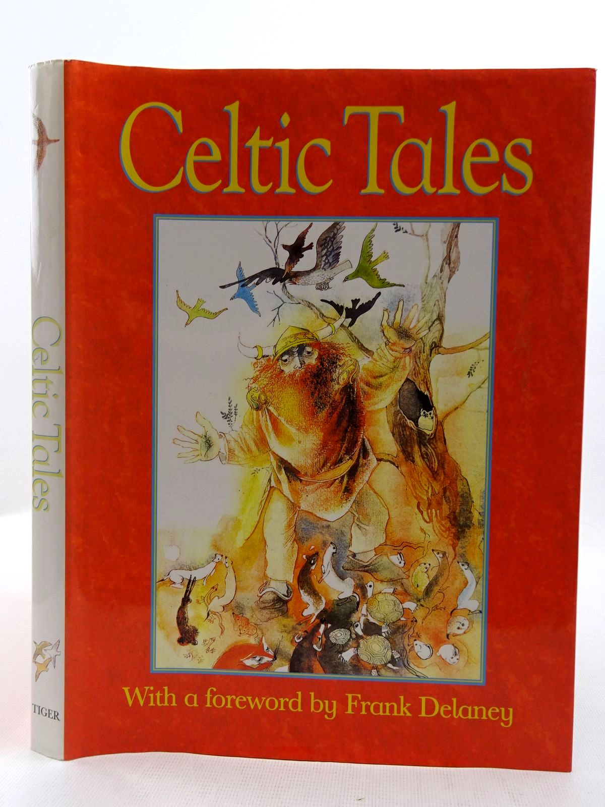 Photo of CELTIC TALES written by Chmelova, Elena Delaney, Frank illustrated by Krejcova, Zdenka published by Tiger Books International (STOCK CODE: 2128447)  for sale by Stella & Rose's Books