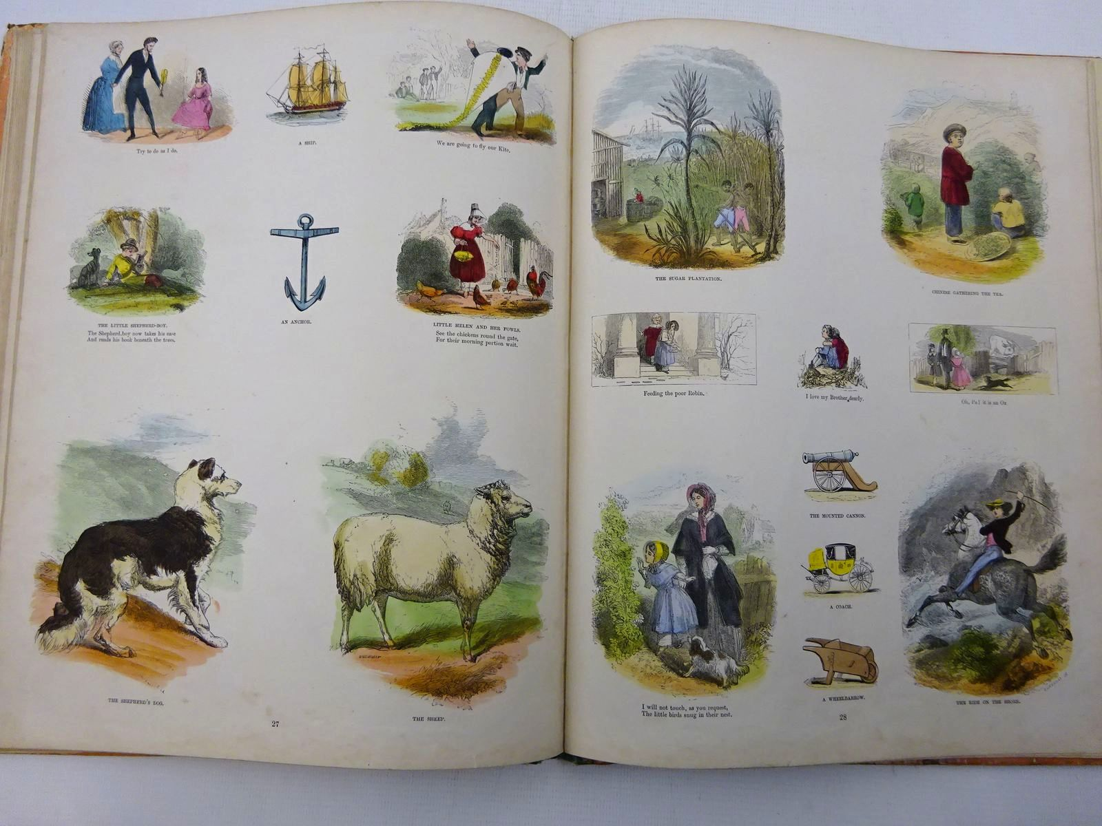 Photo of THE FAVOURITE PICTURE BOOK illustrated by Absolon, John