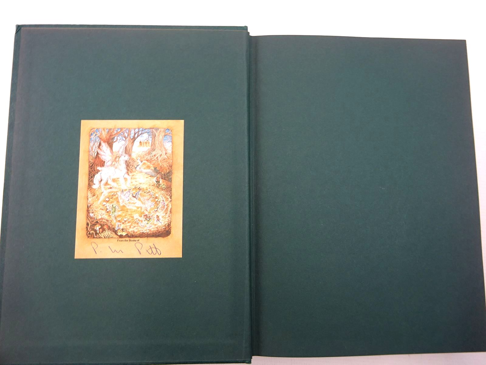Photo of PETER PAN IN KENSINGTON GARDENS written by Barrie, J.M. illustrated by Rackham, Arthur published by Hodder & Stoughton Children's Books (STOCK CODE: 2128940)  for sale by Stella & Rose's Books
