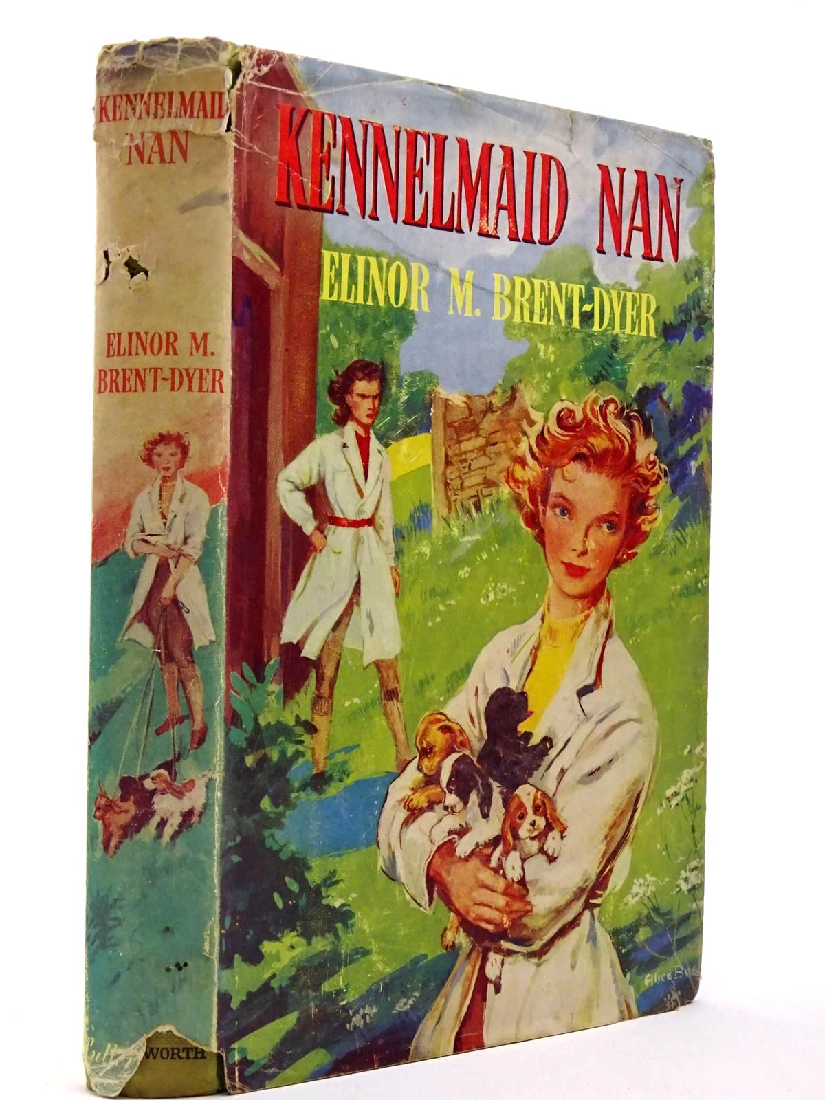 Photo of KENNELMAID NAN- Stock Number: 2129651