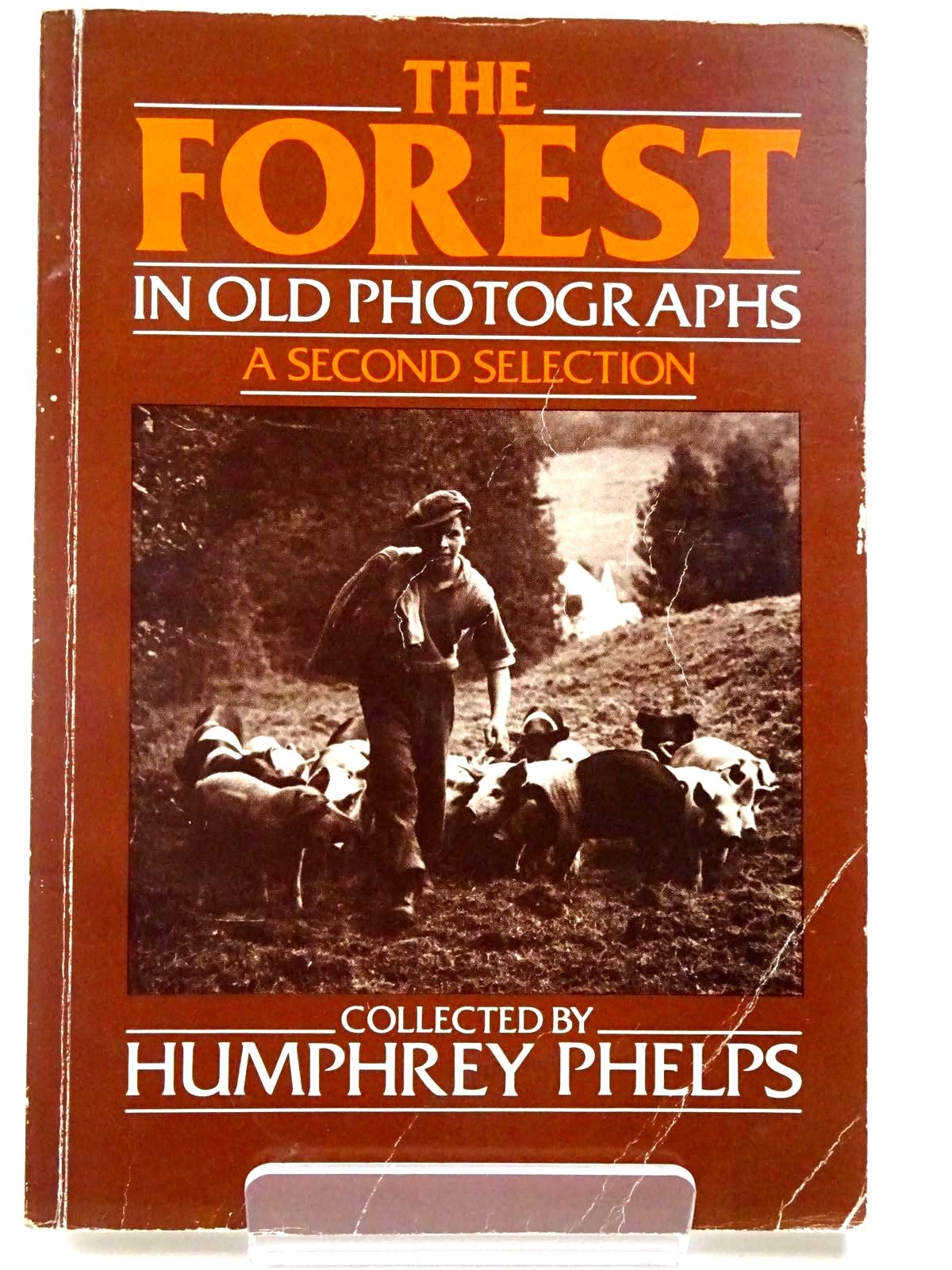 Photo of THE FOREST IN OLD PHOTOGRAPHS A SECOND SELECTION written by Phelps, Humphrey published by Alan Sutton (STOCK CODE: 2129679)  for sale by Stella & Rose's Books