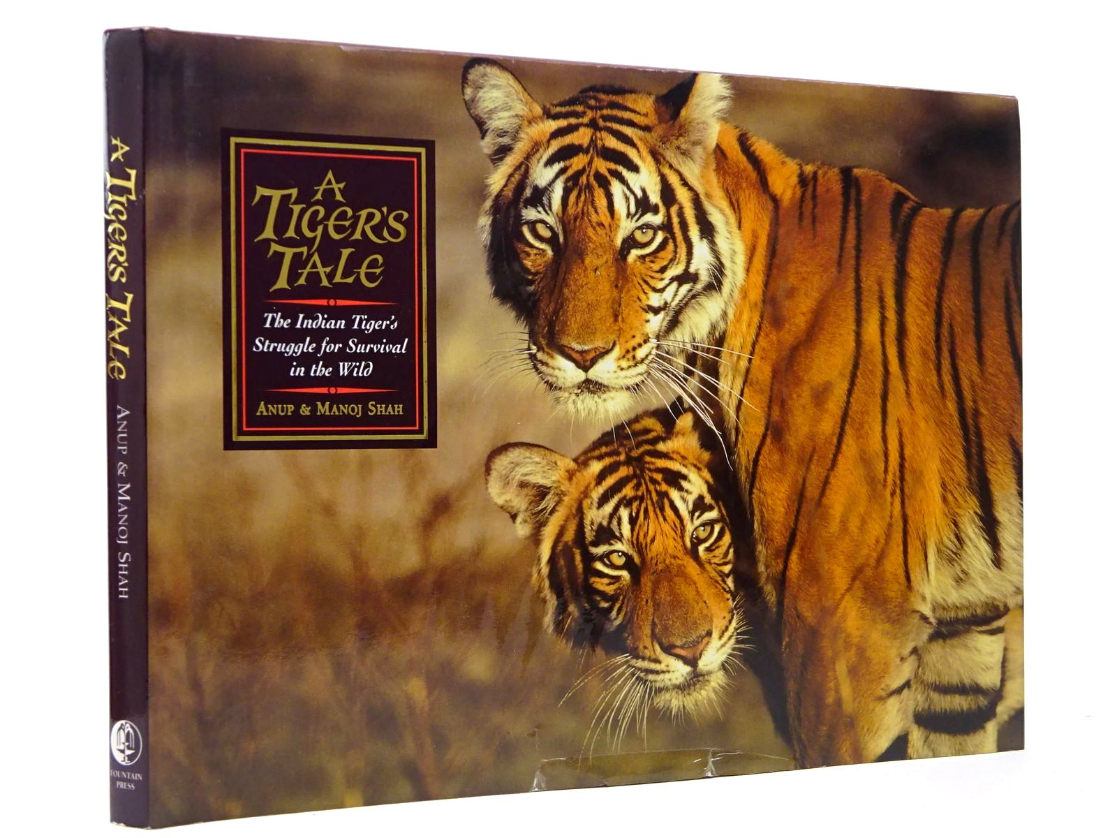 Photo of A TIGER'S TALE- Stock Number: 2129865