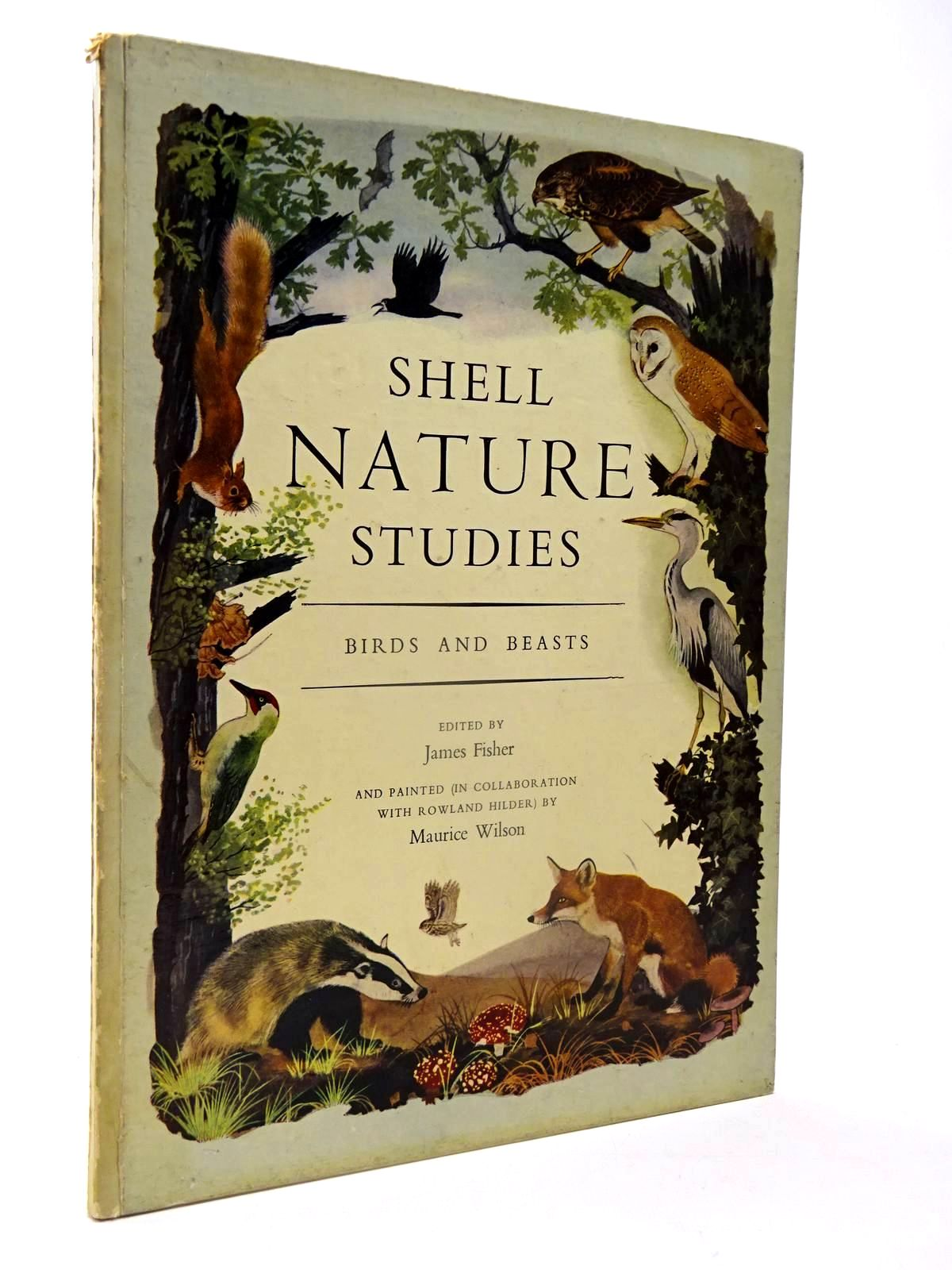 Photo of SHELL NATURE STUDIES BIRDS AND BEASTS- Stock Number: 2130103