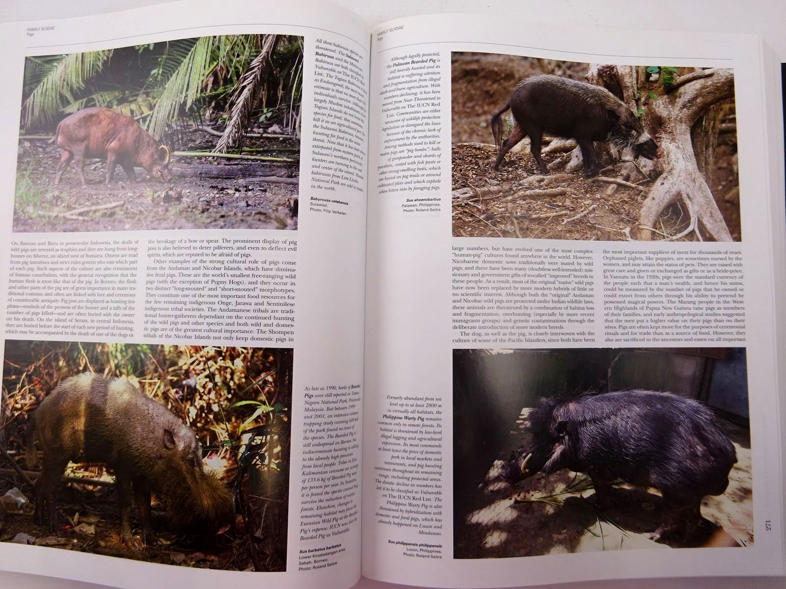 Photo of HANDBOOK OF THE MAMMALS OF THE WORLD 2. HOOFED MAMMALS written by Wilson, Don E.