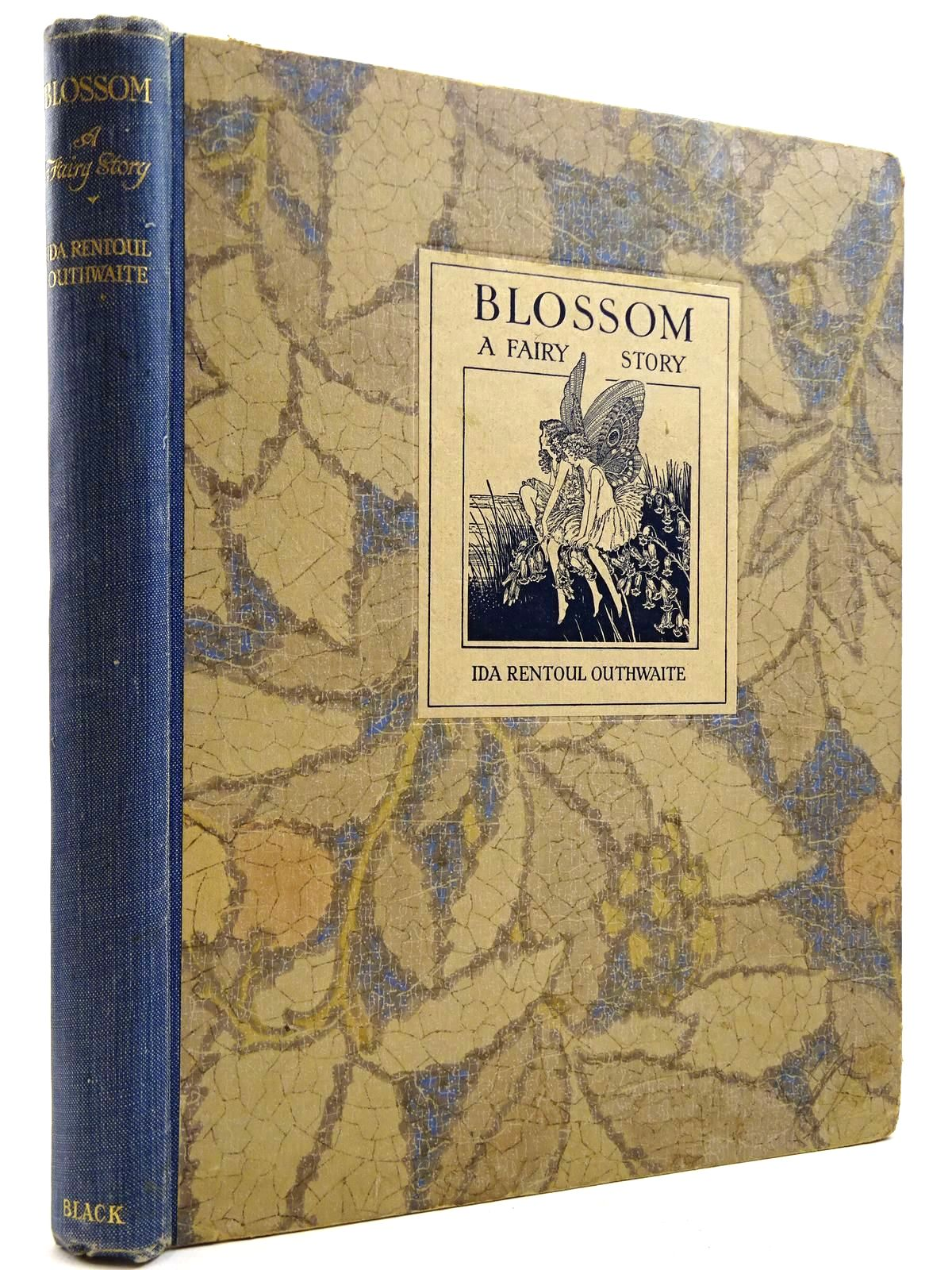 Photo of BLOSSOM A FAIRY STORY- Stock Number: 2131326