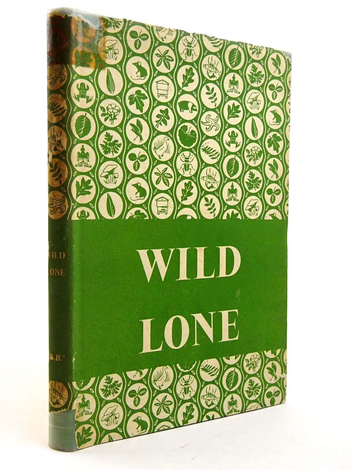 Photo of WILD LONE- Stock Number: 2131624