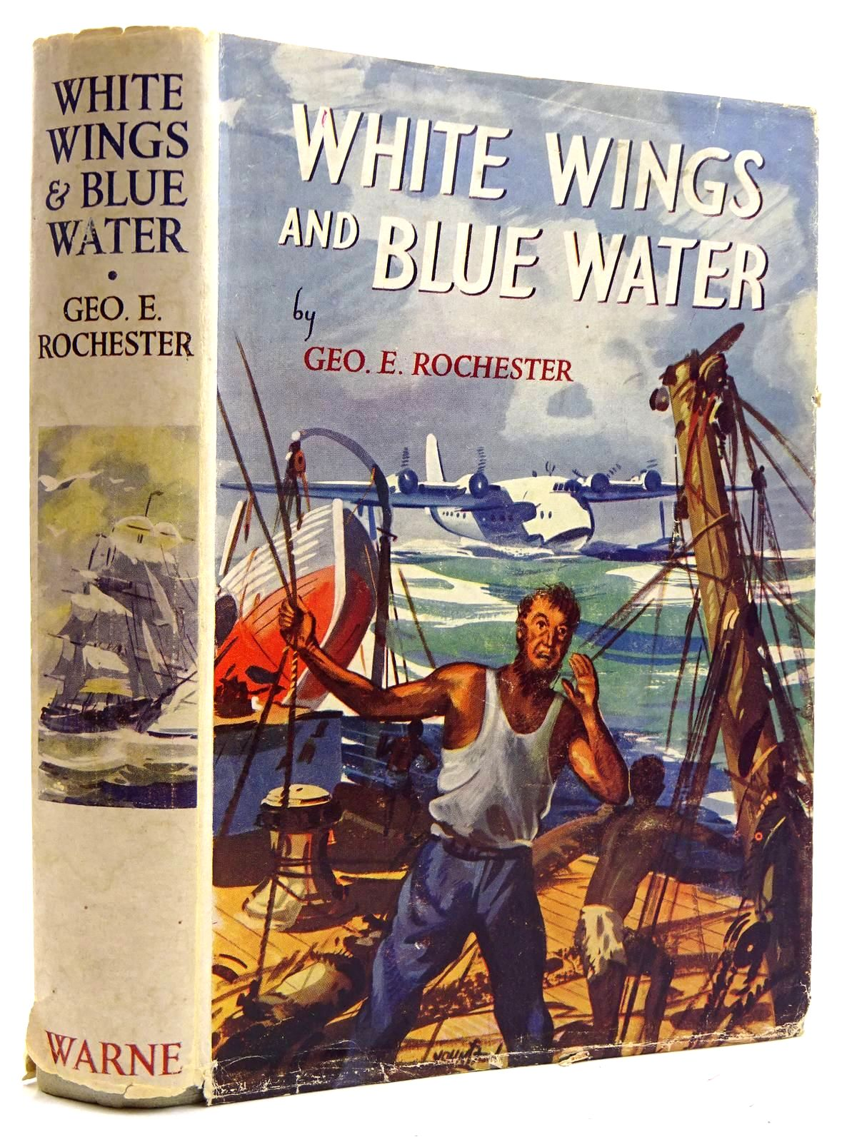 Photo of WHITE WINGS AND BLUE WATER- Stock Number: 2131713