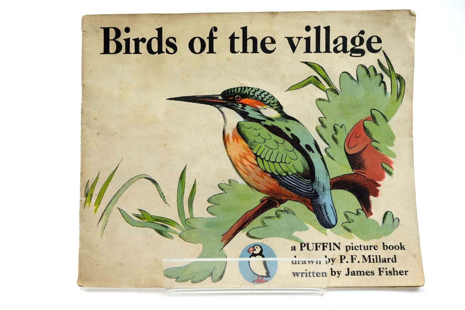 Photo of BIRDS OF THE VILLAGE- Stock Number: 2131935