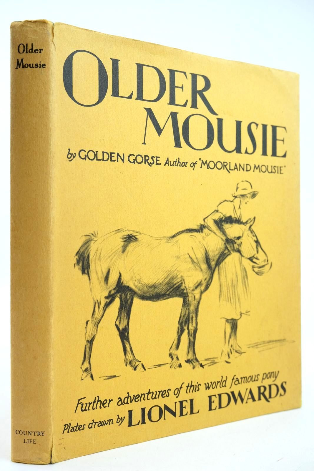 Photo of OLDER MOUSIE- Stock Number: 2132142