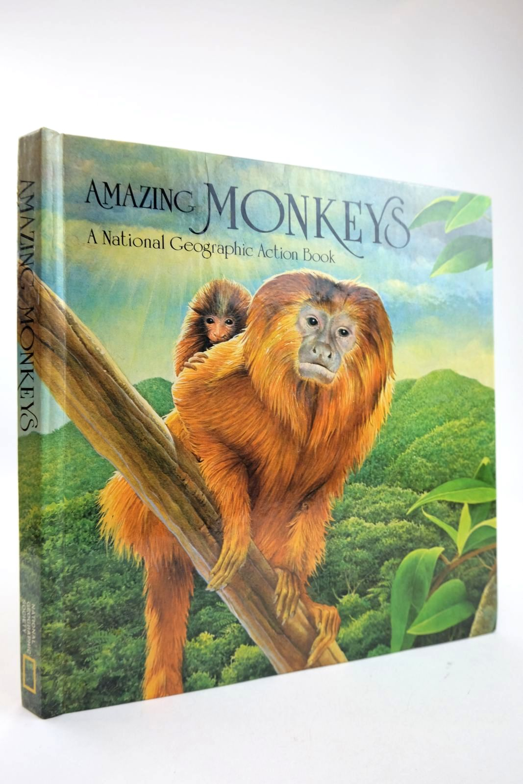 Photo of AMAZING MONKEYS illustrated by Hynes, Robert published by National Geographic Society (STOCK CODE: 2132525)  for sale by Stella & Rose's Books