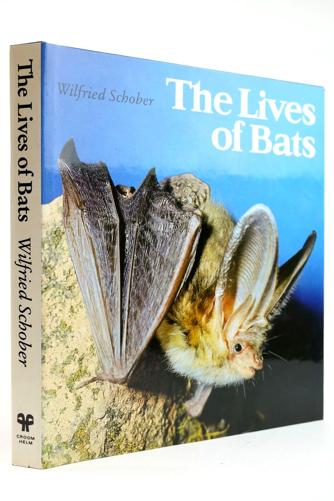 Photo of THE LIVES OF BATS- Stock Number: 2132665