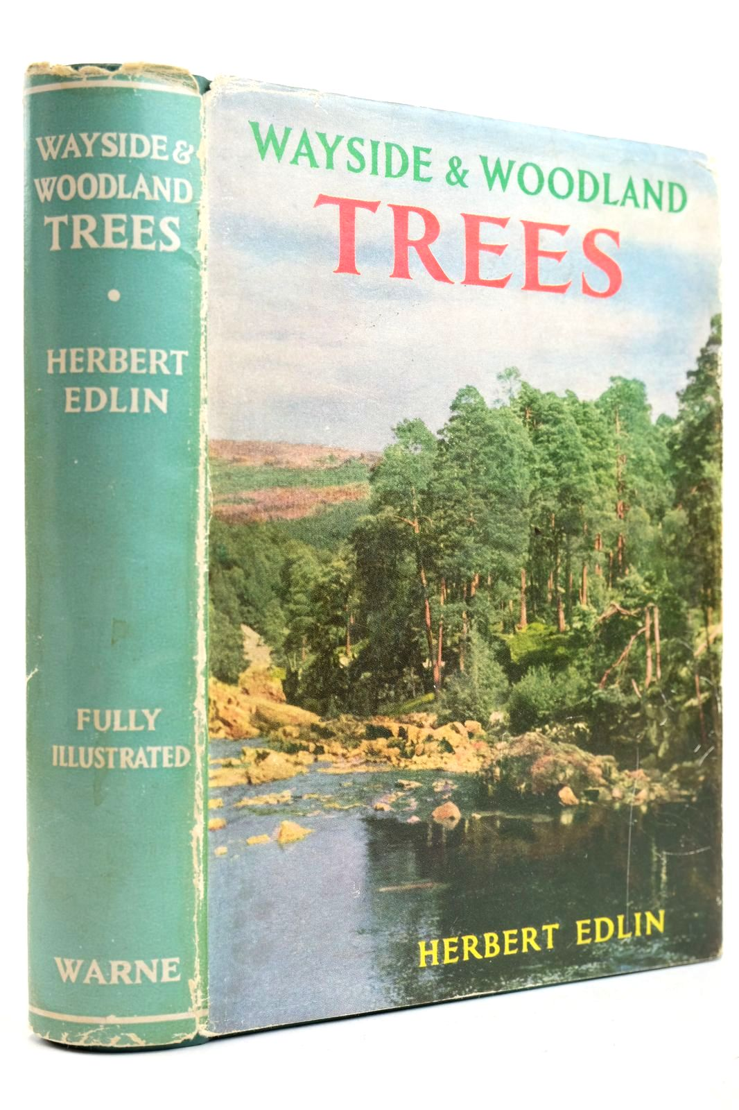 Photo of WAYSIDE AND WOODLAND TREES written by Edlin, Herbert L. published by Frederick Warne & Co Ltd. (STOCK CODE: 2132672)  for sale by Stella & Rose's Books