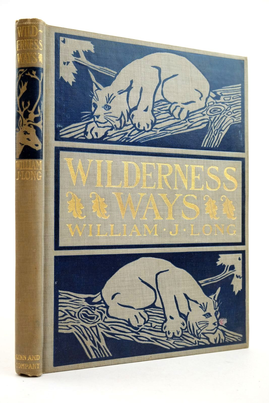 Photo of WILDERNESS WAYS written by Long, William J. published by Ginn and Company (STOCK CODE: 2132748)  for sale by Stella & Rose's Books