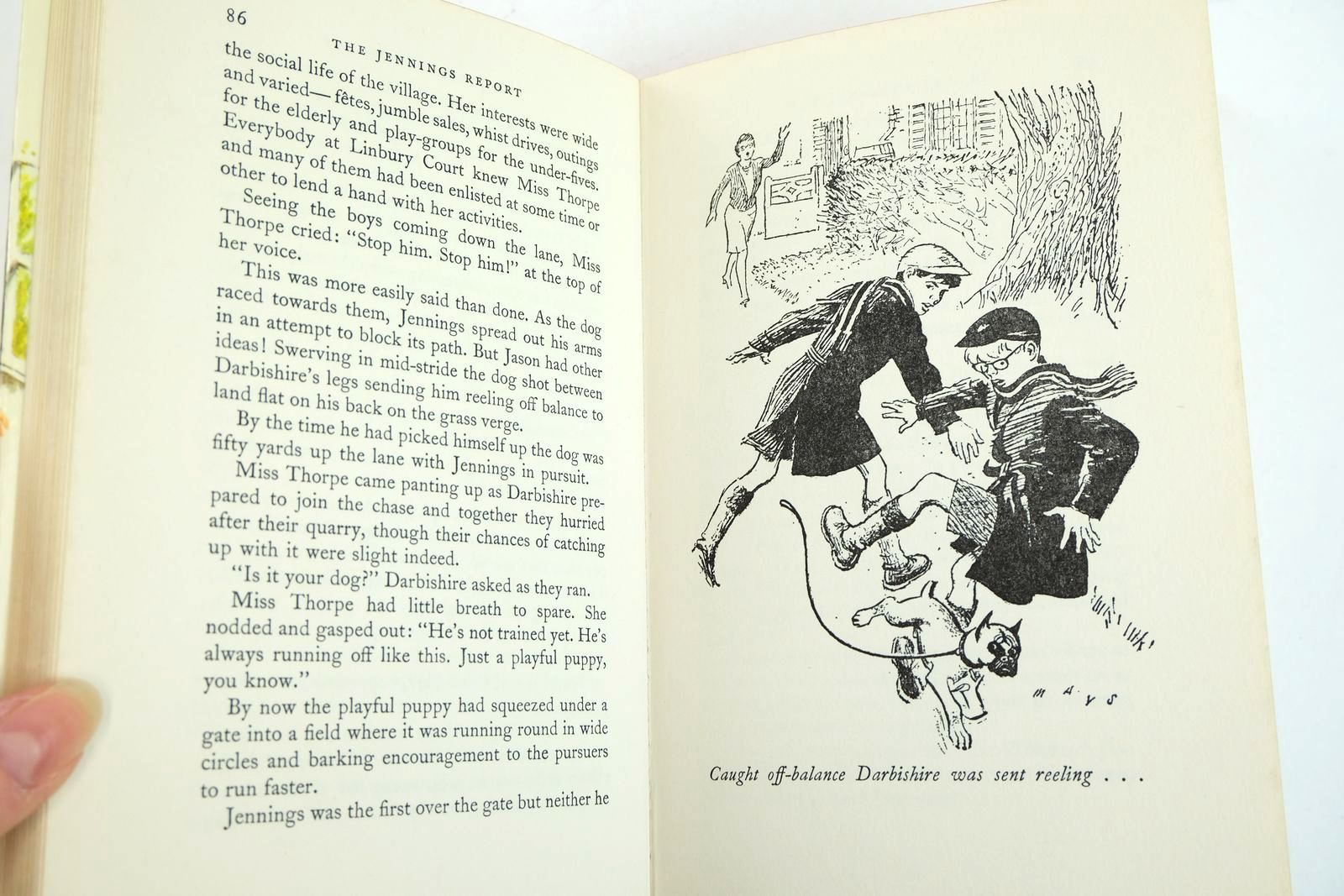 Photo of THE JENNINGS REPORT written by Buckeridge, Anthony illustrated by Mays,  published by Collins (STOCK CODE: 2132832)  for sale by Stella & Rose's Books