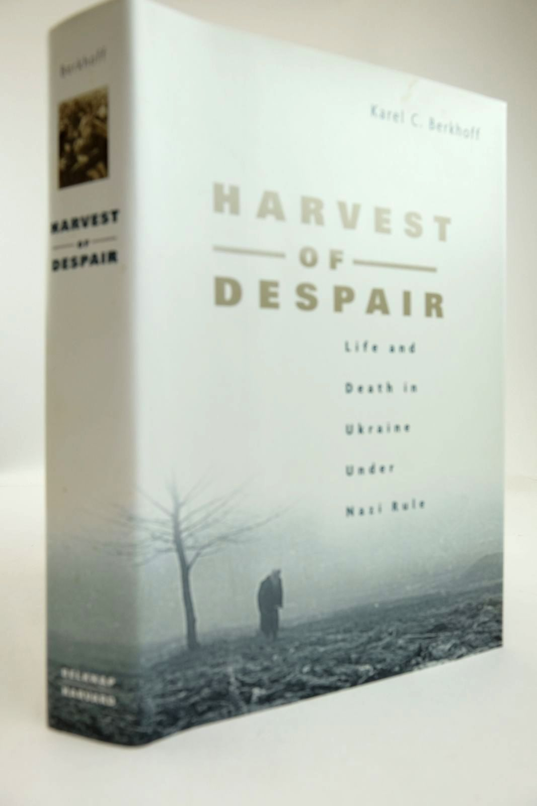 Photo of HARVEST OF DESPAIR- Stock Number: 2132853