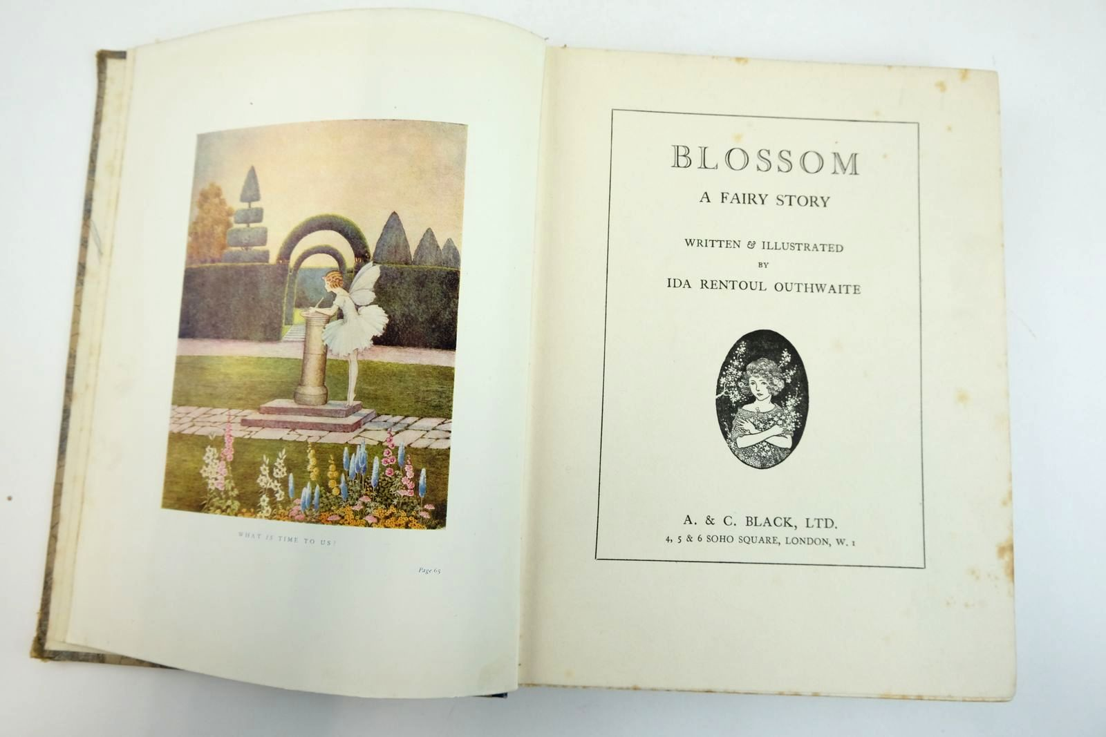 Photo of BLOSSOM A FAIRY STORY written by Outhwaite, Ida Rentoul illustrated by Outhwaite, Ida Rentoul published by A. & C. Black Ltd. (STOCK CODE: 2133201)  for sale by Stella & Rose's Books