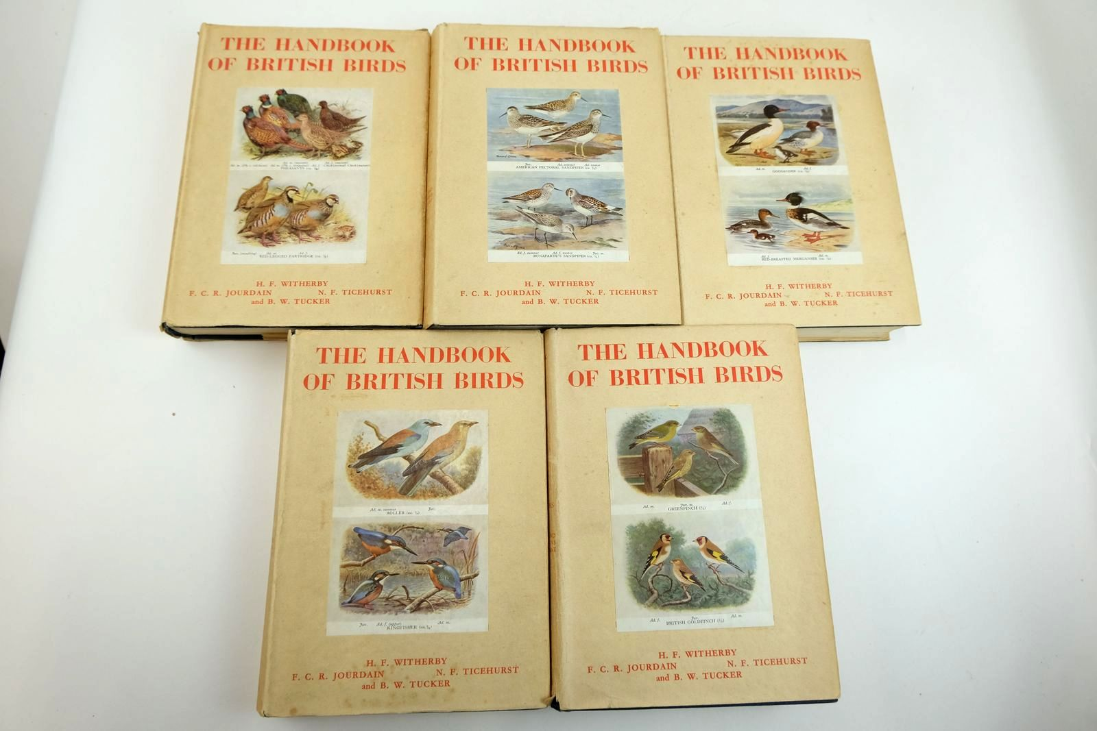 Photo of THE HANDBOOK OF BRITISH BIRDS VOLUMES I - V written by Witherby, H.F. Jourdain, F.C.R. Ticehurst, Norman F. Tucker, Norman W. published by H.F. & G. Witherby Ltd. (STOCK CODE: 2133254)  for sale by Stella & Rose's Books