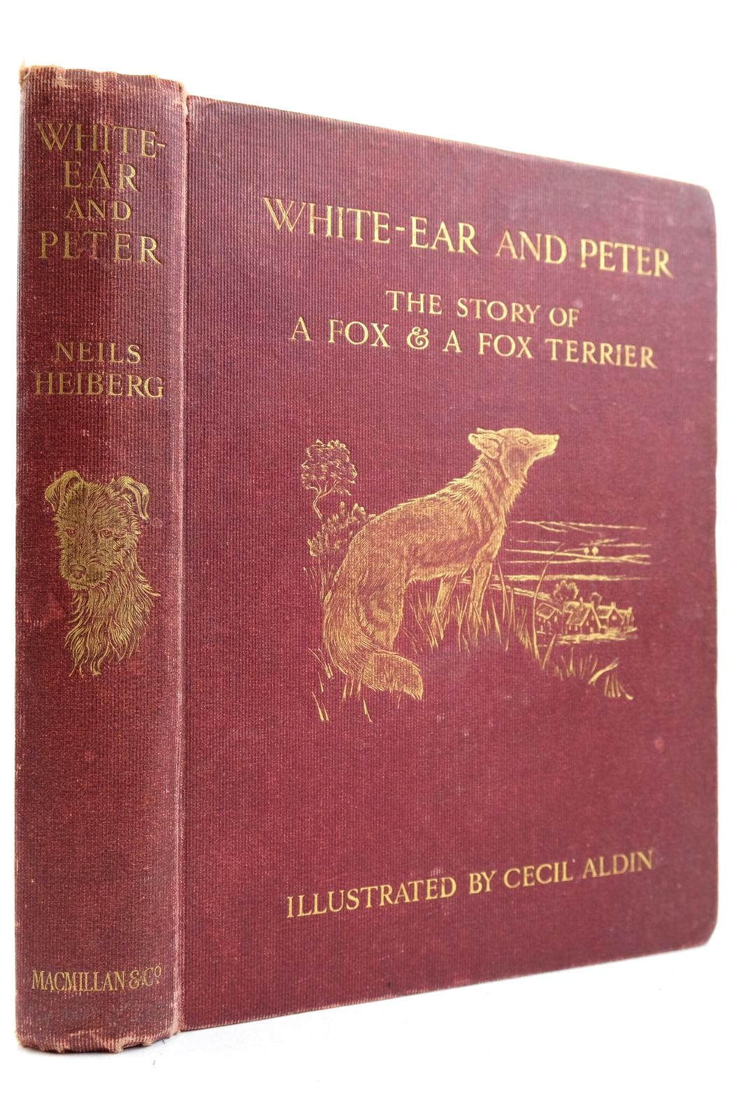 Photo of WHITE-EAR AND PETER- Stock Number: 2133287