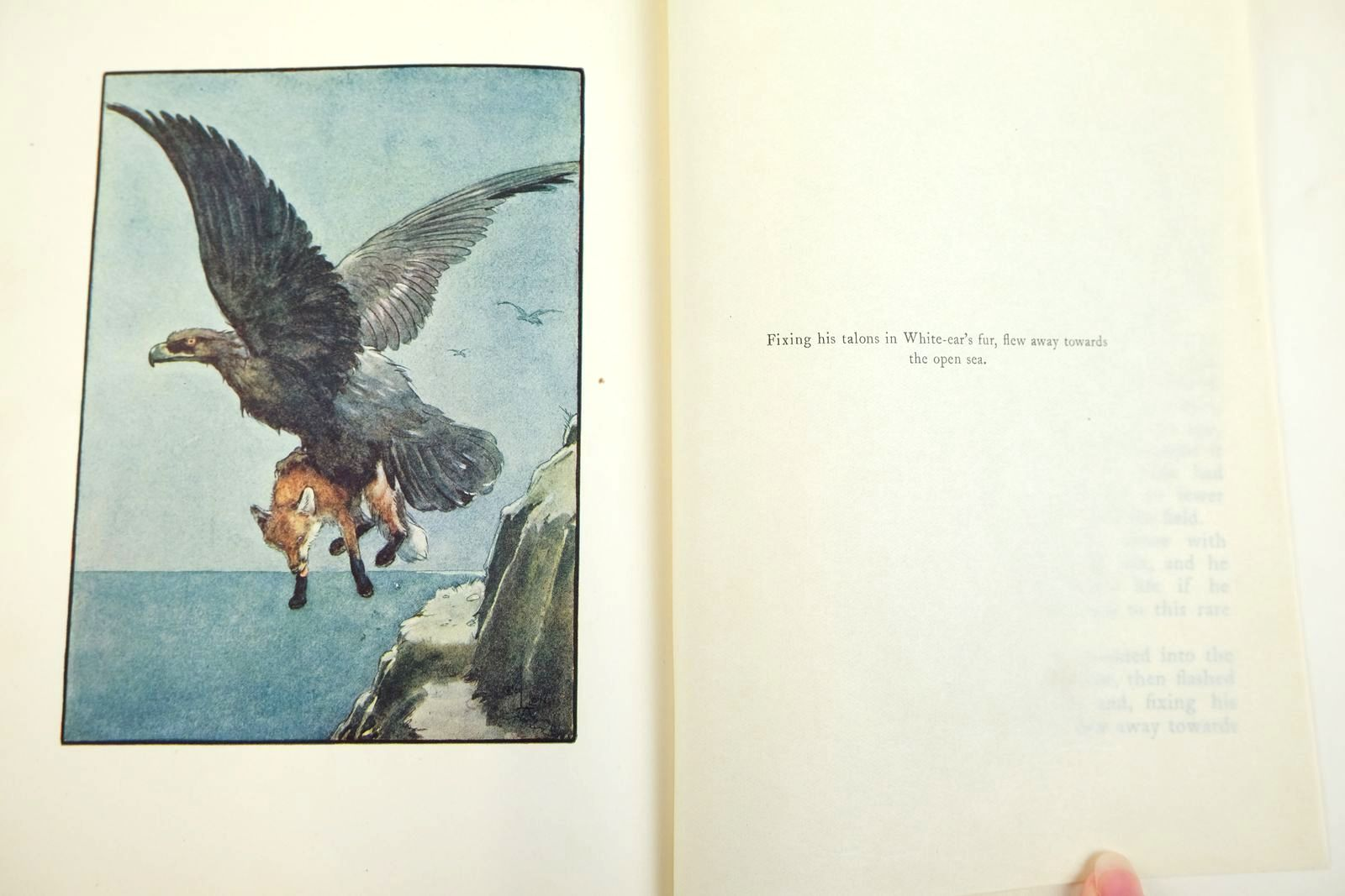 Photo of WHITE-EAR AND PETER written by Heiberg, Neils illustrated by Aldin, Cecil published by Macmillan & Co. Ltd. (STOCK CODE: 2133287)  for sale by Stella & Rose's Books