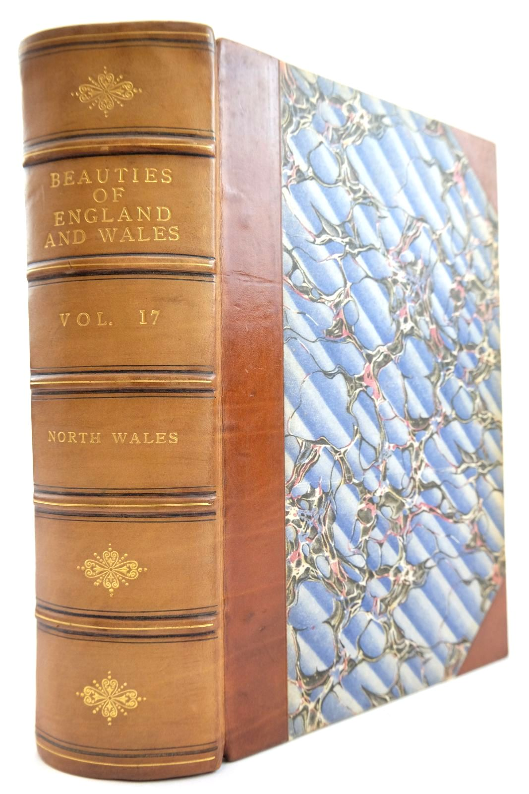 Photo of BEAUTIES OF ENGLAND AND WALES VOL. XVII - PART I NORTH WALES- Stock Number: 2134134