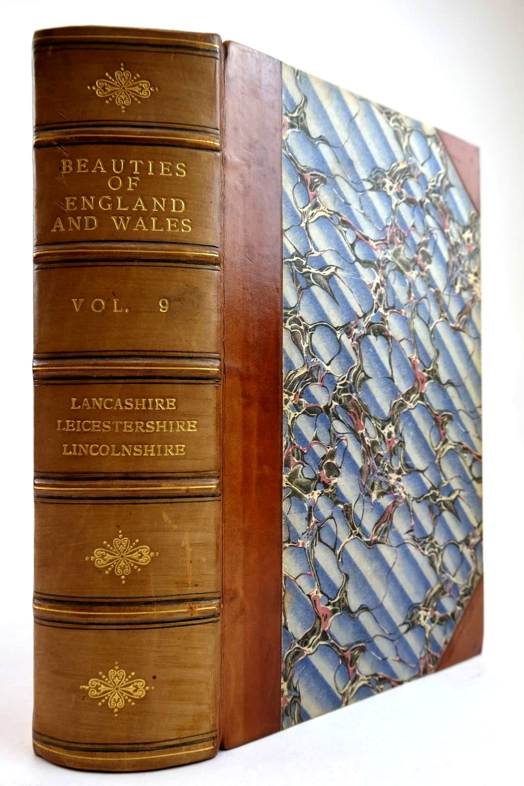 Photo of THE BEAUTIES OF ENGLAND AND WALES VOL. IX written by Britton, John published by Vernor, Hood & Sharpe, Longman, Hurst, Rees And Orme, Cuthell And Martin (STOCK CODE: 2134257)  for sale by Stella & Rose's Books