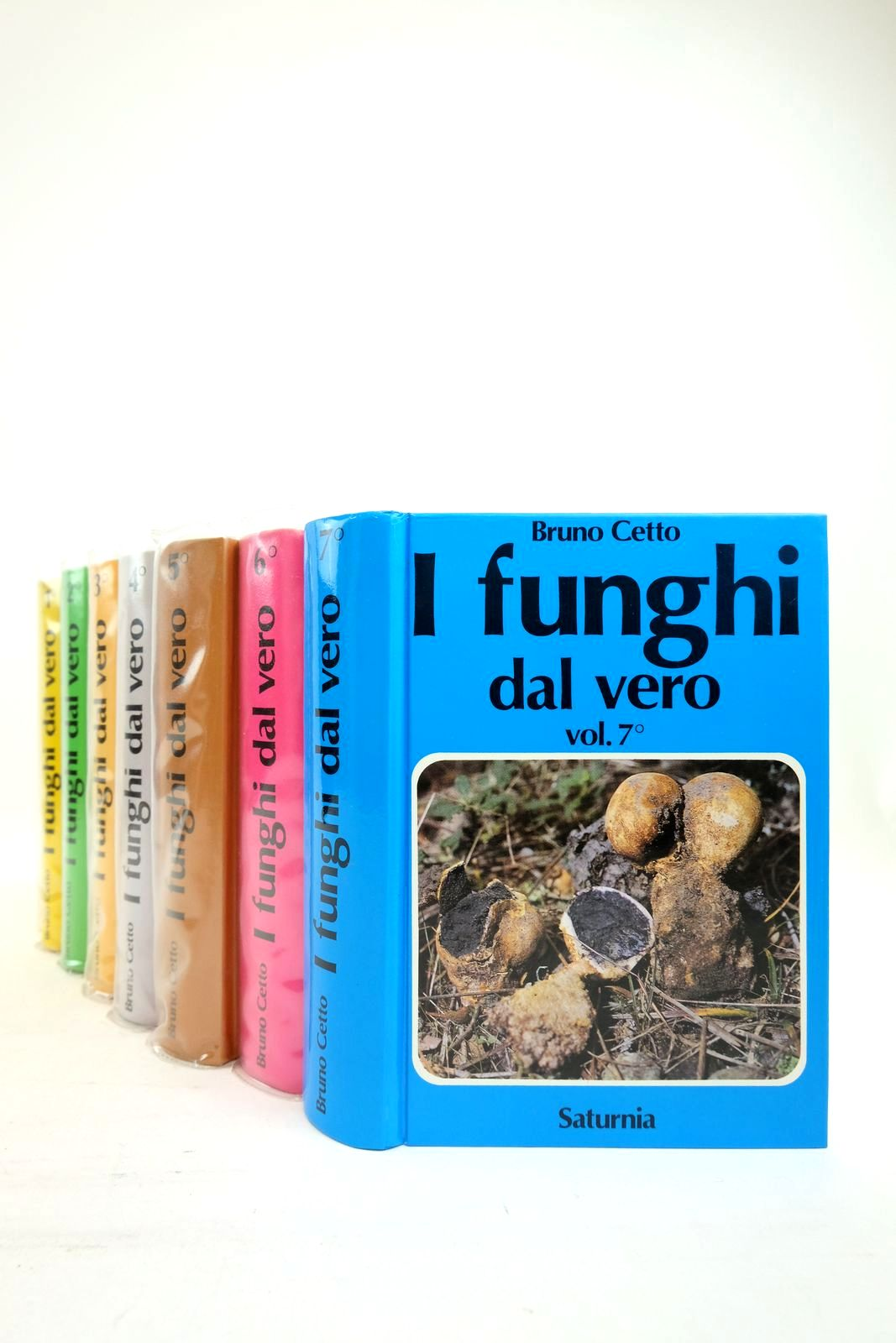 Photo of I FUNGHI DAL VERO (7 VOLUMES) written by Cetto, Bruno published by Arti Grafiche Saturnia (STOCK CODE: 2134639)  for sale by Stella & Rose's Books