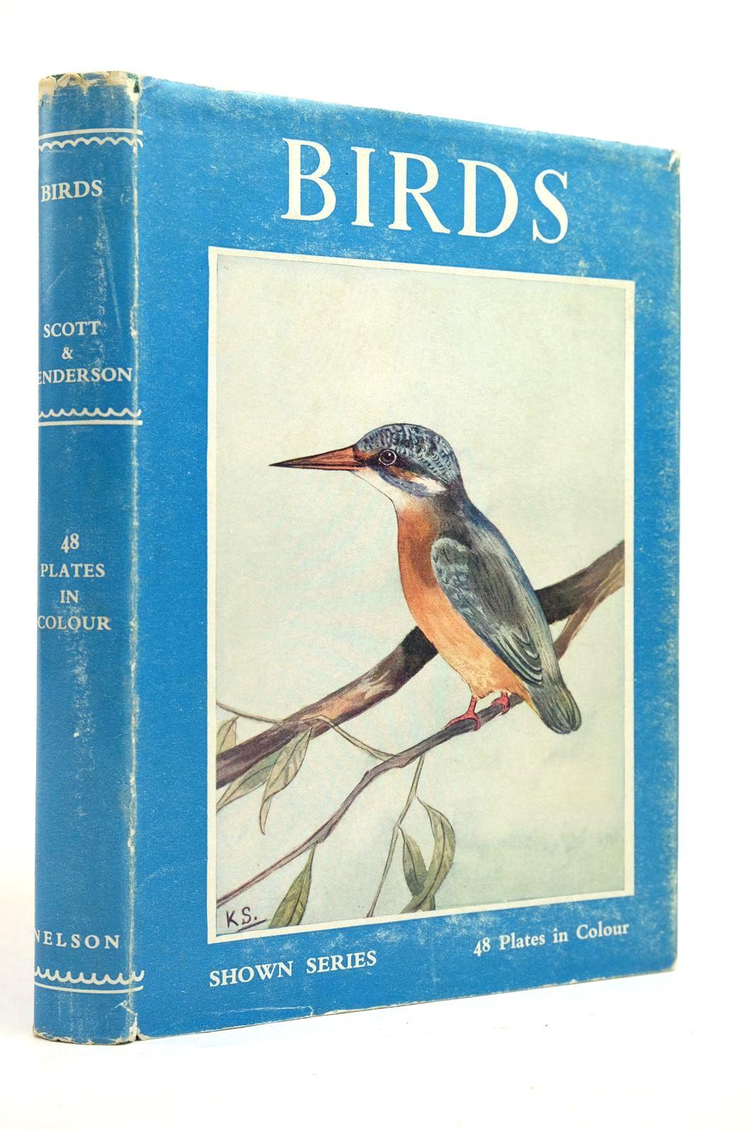 Photo of BIRDS- Stock Number: 2134677