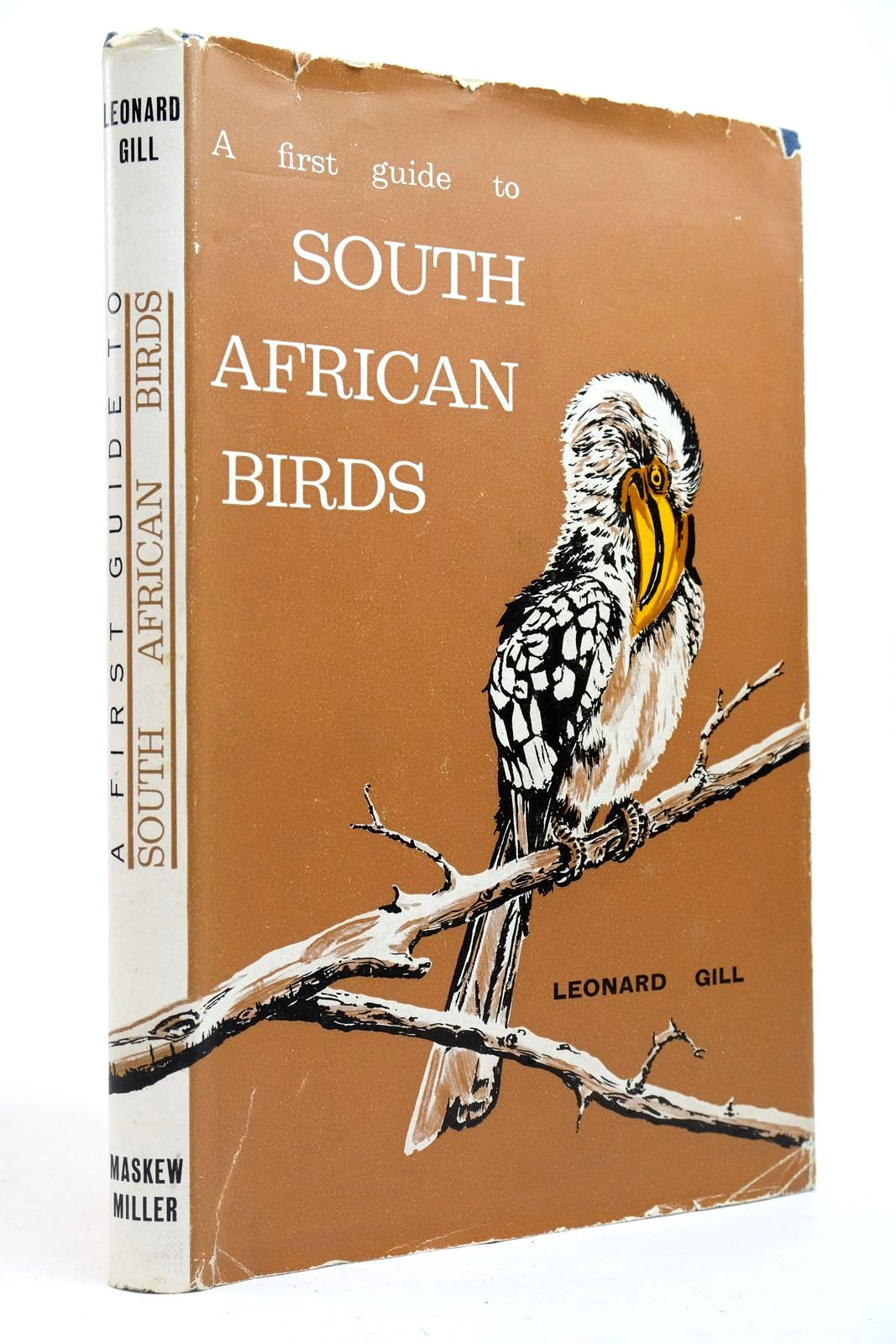 Photo of A FIRST GUIDE TO SOUTH AFRICAN BIRDS- Stock Number: 2134680