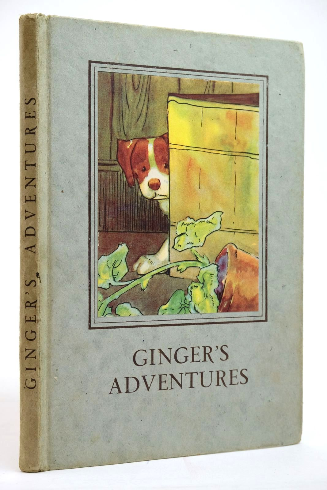 Photo of GINGER'S ADVENTURES written by Macgregor, A.J. Perring, W. illustrated by Macgregor, A.J. published by Wills & Hepworth Ltd. (STOCK CODE: 2135157)  for sale by Stella & Rose's Books