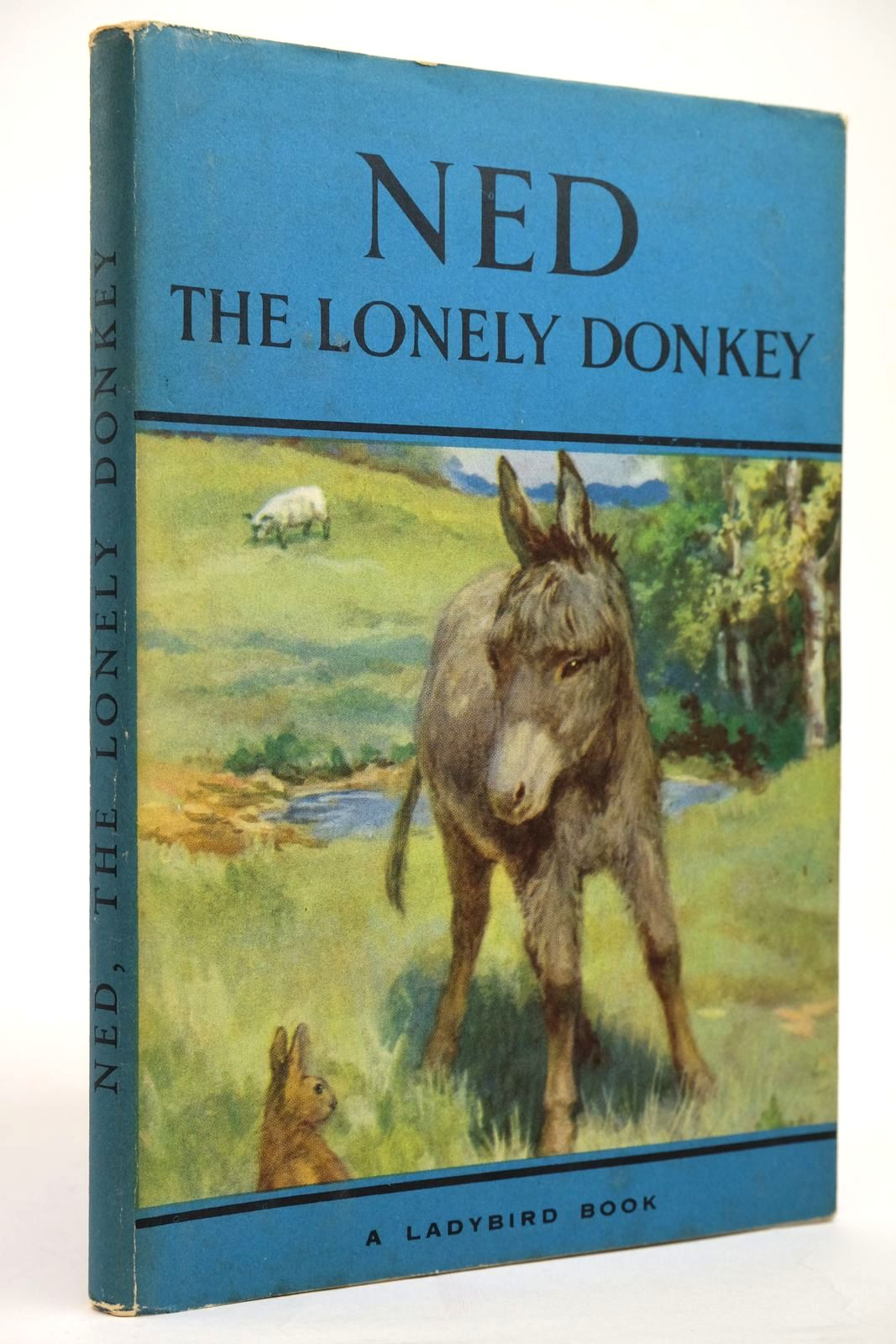 Photo of NED THE LONELY DONKEY- Stock Number: 2135161