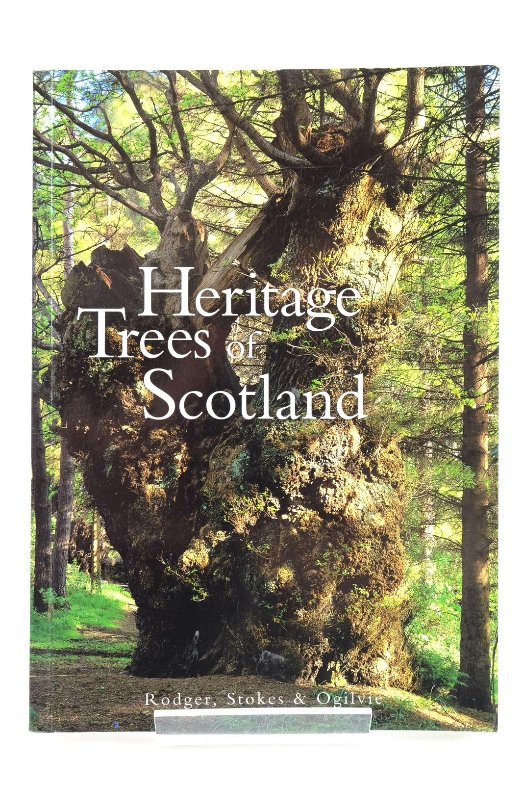 Photo of THE HERITAGE TREES OF SCOTLAND written by Stokes, Jon Rodger, Donald published by The Tree Council (STOCK CODE: 2135406)  for sale by Stella & Rose's Books