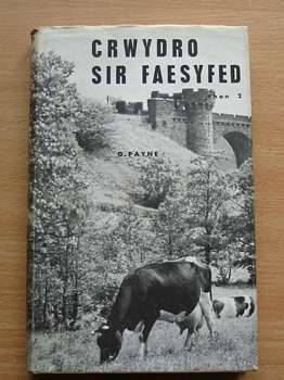 Photo of CRWYDRO SIR FAESFYFED RHAN 2 written by Payne, F.G. published by Christopher Davies, Llyfrau'r Dryw (STOCK CODE: 559546)  for sale by Stella & Rose's Books
