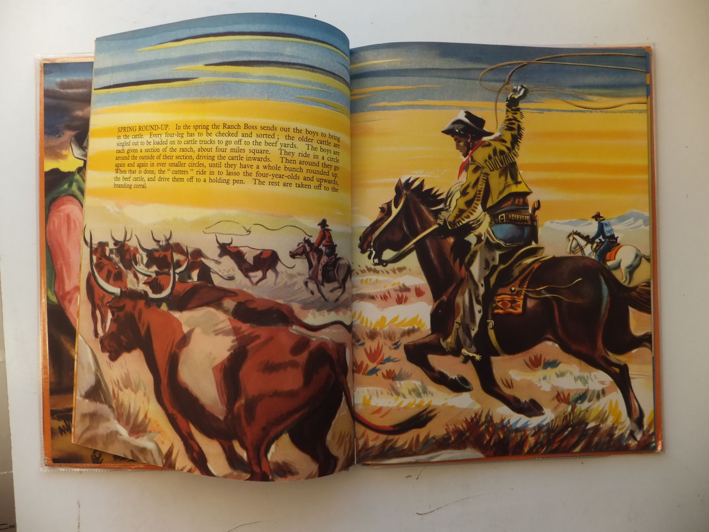 Photo of LIFE WITH THE COWBOYS illustrated by Forster, Stein Forster, Reg published by The Heirloom Library (STOCK CODE: 569008)  for sale by Stella & Rose's Books